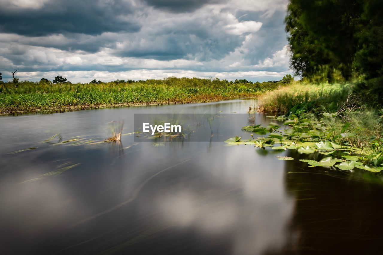 cloud - sky, water, sky, plant, nature, tranquility, tranquil scene, scenics - nature, no people, growth, tree, reflection, beauty in nature, green color, lake, day, land, landscape, environment, outdoors