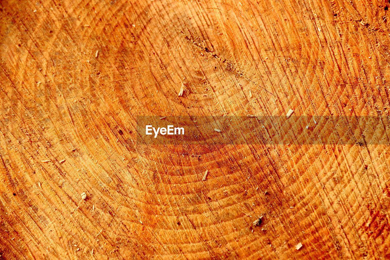 Full frame shot of log