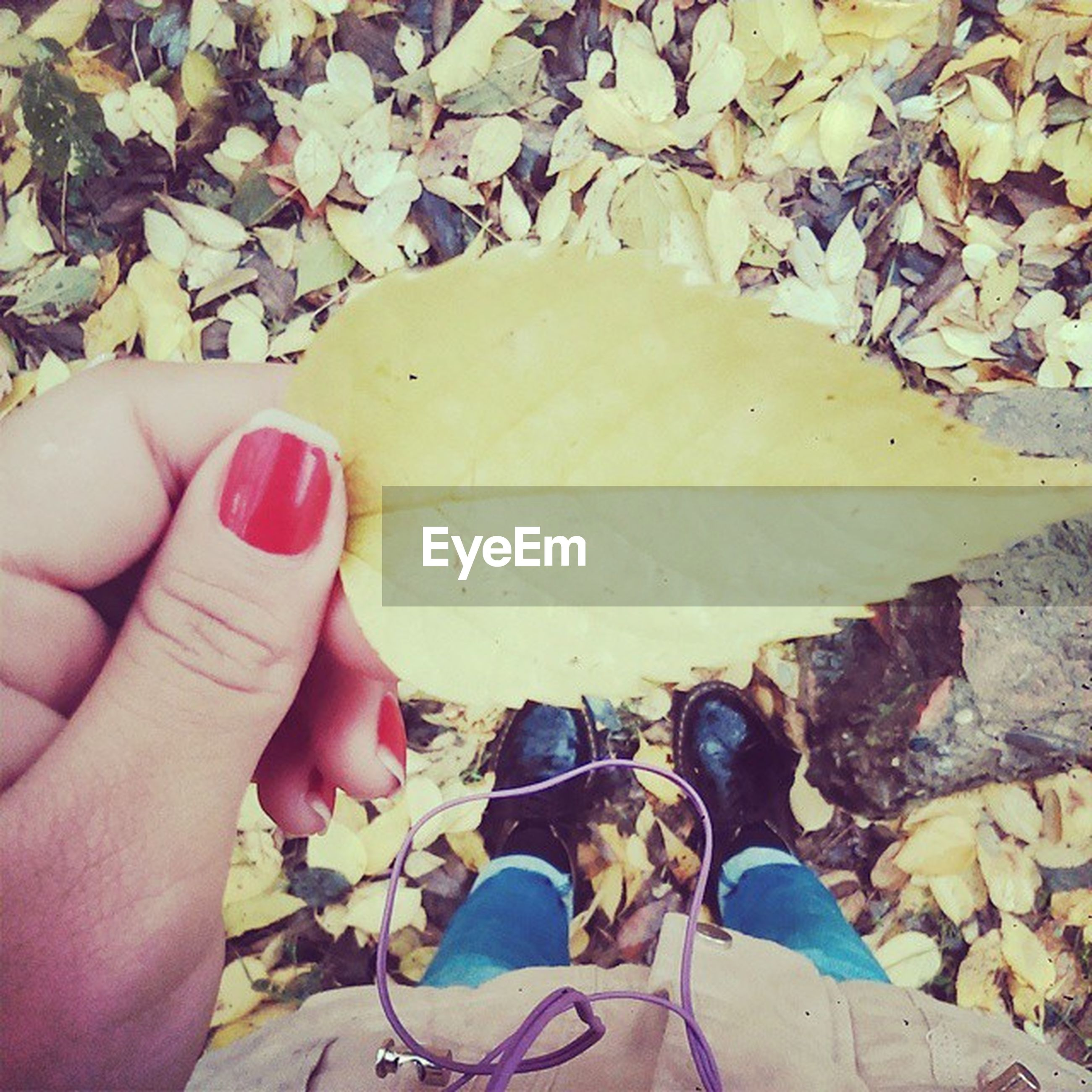 person, leaf, personal perspective, high angle view, part of, unrecognizable person, low section, dry, holding, lifestyles, autumn, animal themes, leisure activity, cropped, human finger, leaves