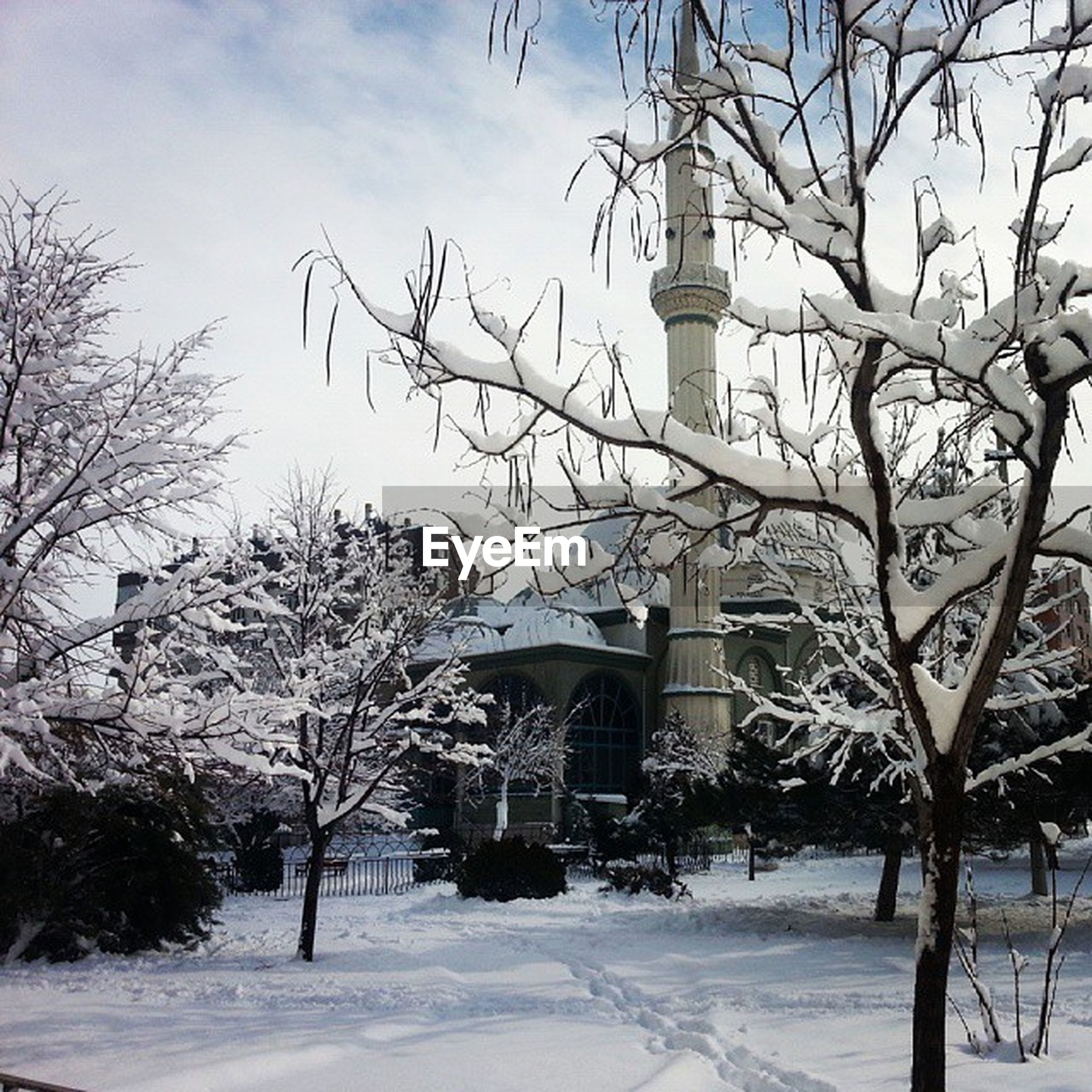 architecture, built structure, building exterior, bare tree, snow, tree, winter, cold temperature, sky, branch, season, covering, house, white color, day, weather, outdoors, cloud - sky, nature, church