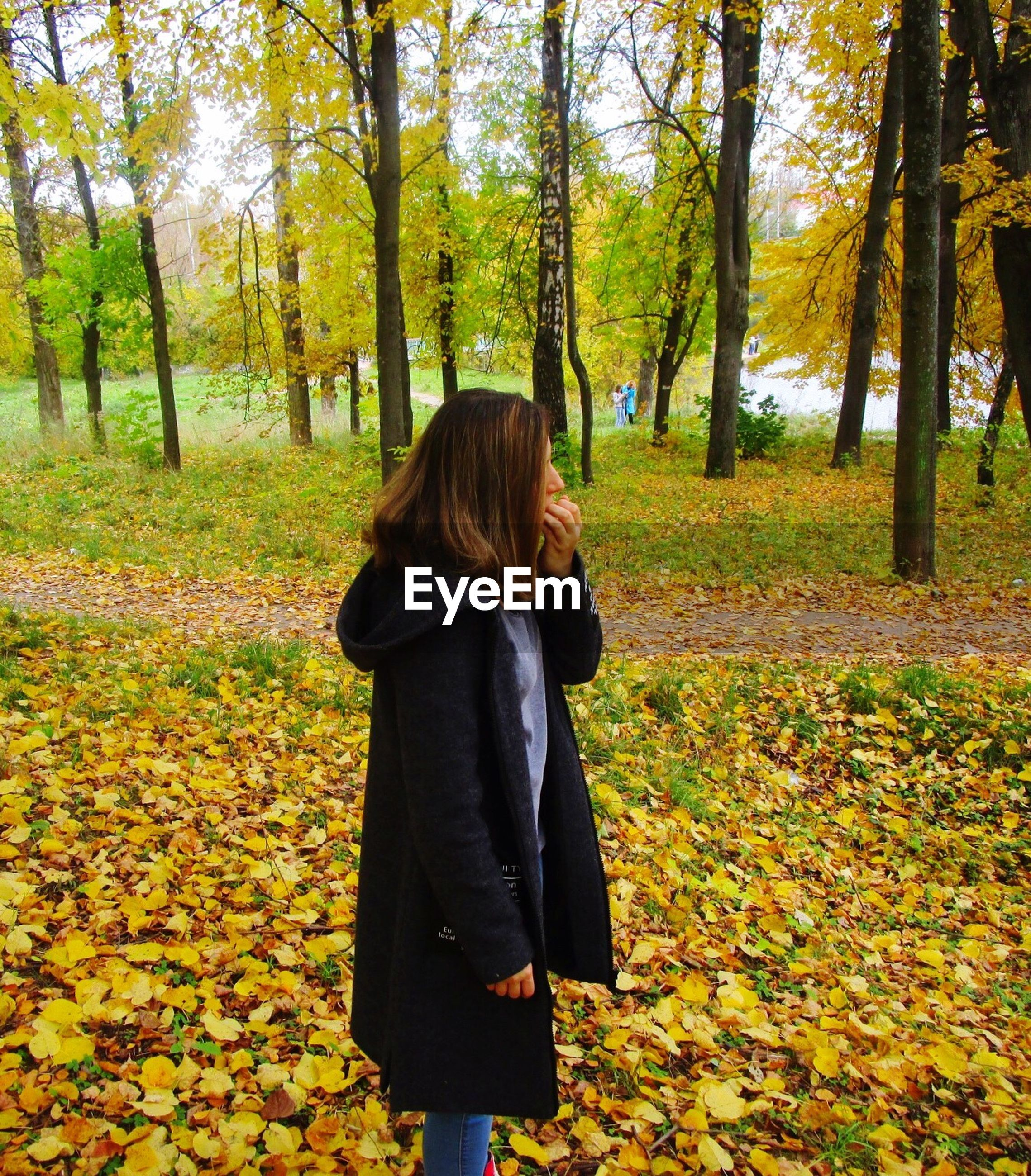 rear view, leaf, autumn, tree, season, change, leisure activity, standing, tree trunk, leaves, park - man made space, lifestyles, footpath, person, day, casual clothing, field, park, green color, nature, tourist, abundance, tranquility, tranquil scene, growth, outdoors, scenics