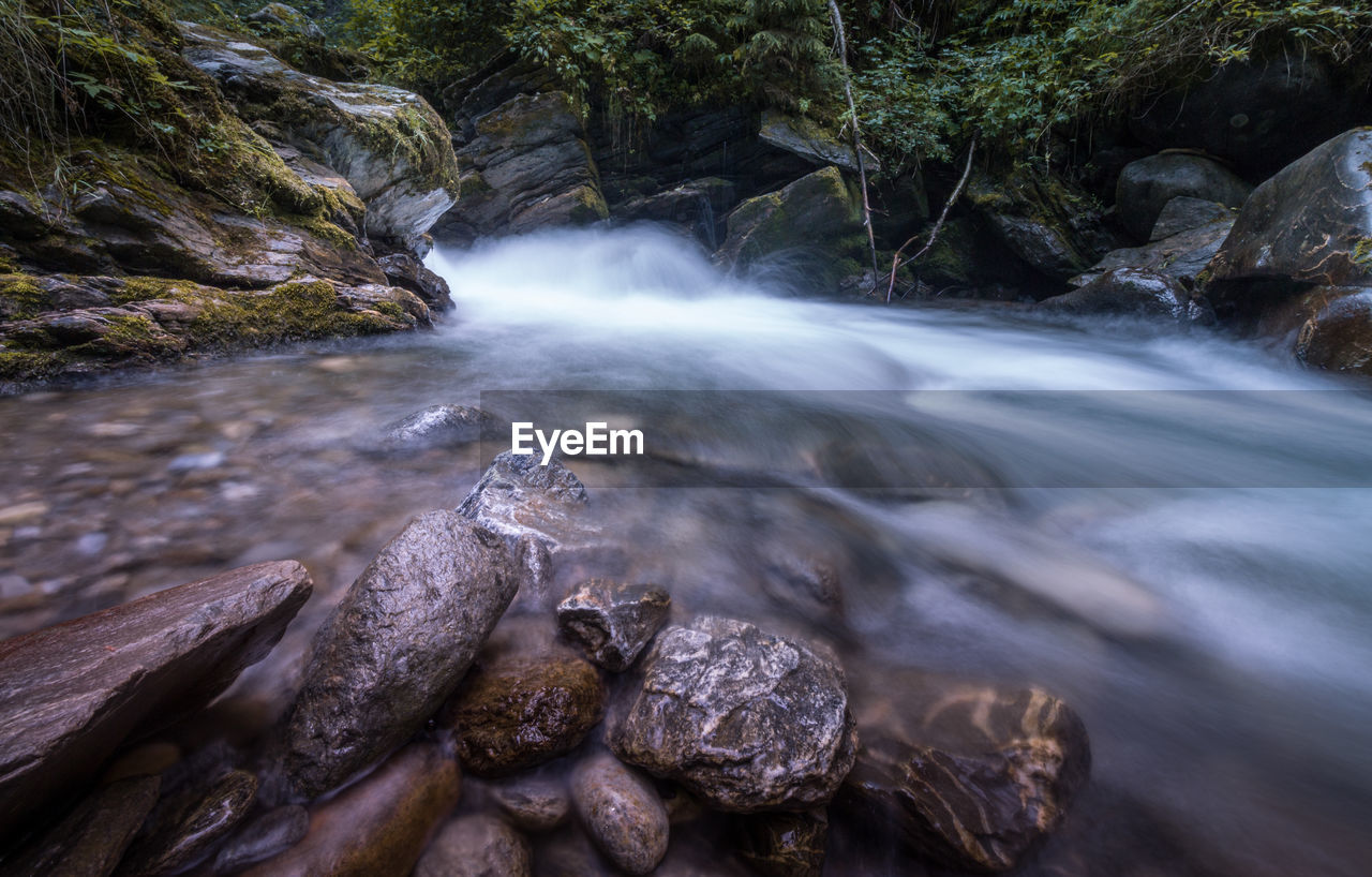 rock, motion, water, rock - object, long exposure, solid, scenics - nature, flowing water, blurred motion, waterfall, beauty in nature, forest, nature, flowing, no people, day, tree, land, outdoors, stream - flowing water, power in nature, purity, falling water