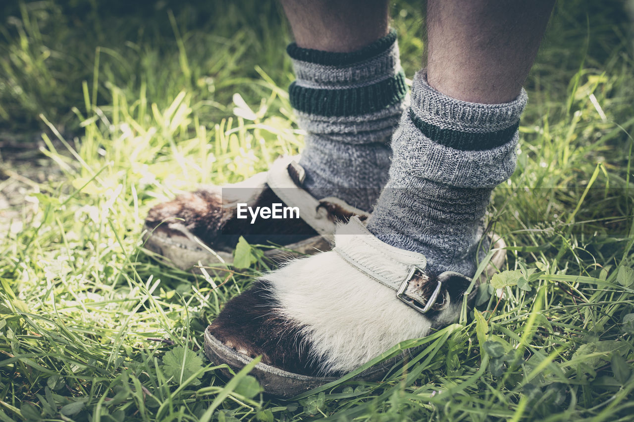Low section of person wearing furred shoes on grass