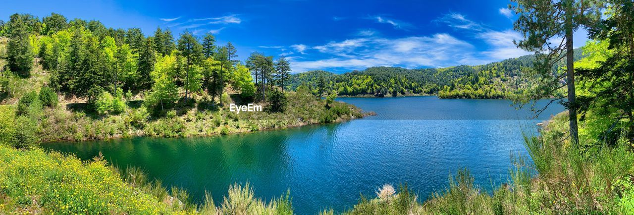 plant, tree, beauty in nature, water, scenics - nature, tranquility, tranquil scene, sky, green color, blue, lake, nature, growth, mountain, cloud - sky, idyllic, non-urban scene, day, no people, outdoors