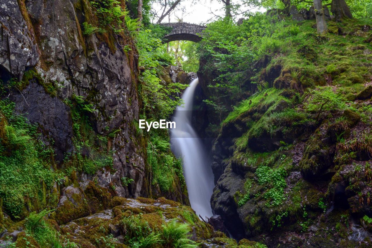 waterfall, tree, long exposure, forest, scenics - nature, plant, rock, water, beauty in nature, motion, rock - object, flowing water, blurred motion, solid, land, nature, non-urban scene, day, no people, flowing, outdoors, falling water, rainforest, power in nature