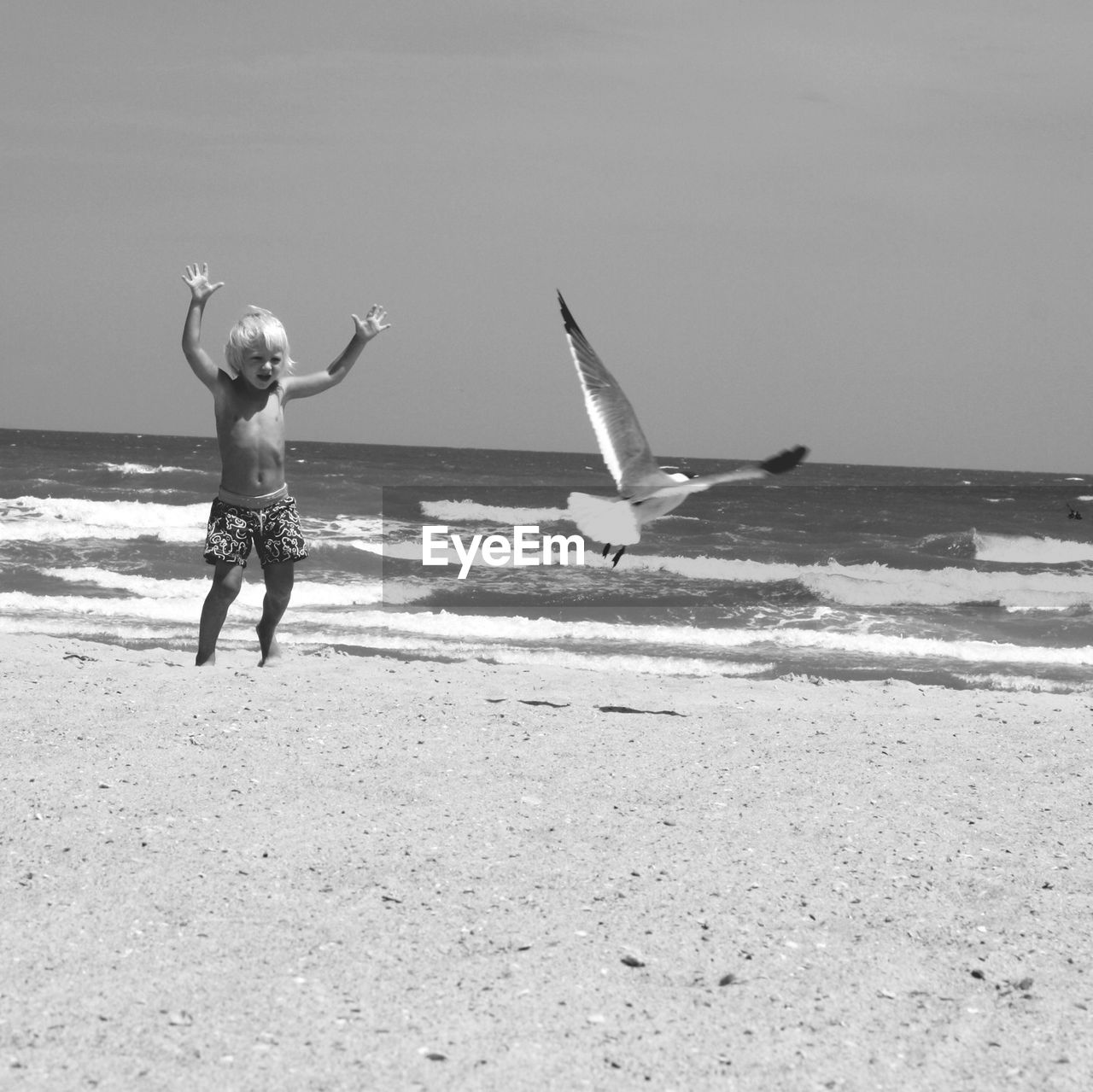 Young boy chasing seagull on beach