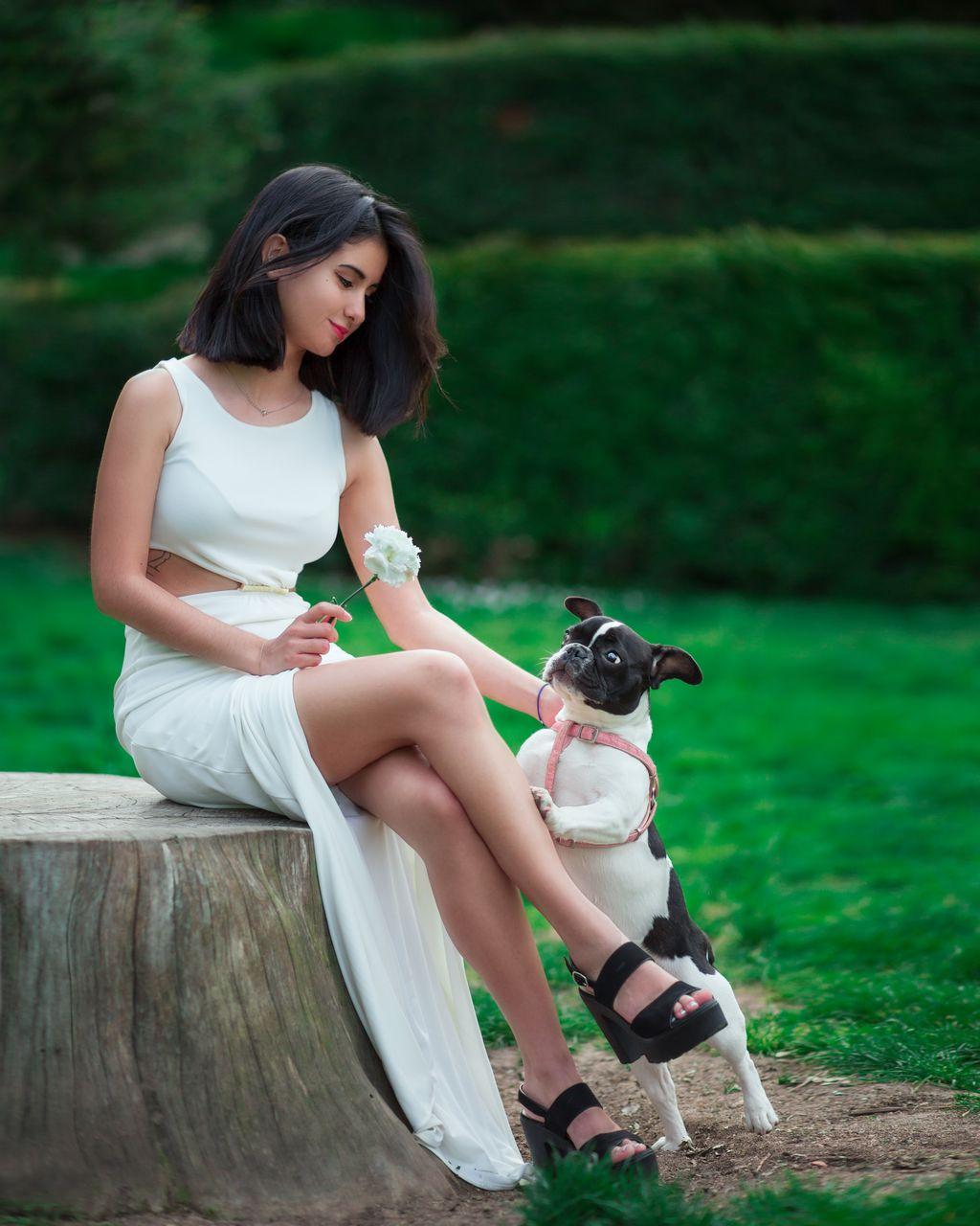 Woman With Dog Sitting On Tree Stump