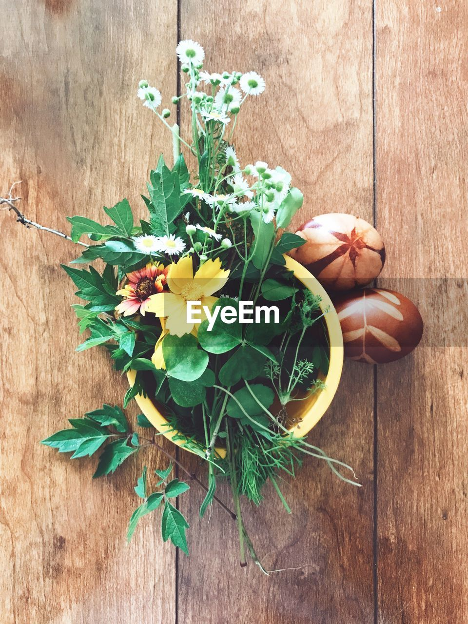 plant, wood - material, freshness, flower, flowering plant, table, nature, leaf, green color, plant part, close-up, beauty in nature, fragility, directly above, vulnerability, no people, indoors, high angle view, growth, potted plant, flower head, flower arrangement, herb, bouquet, flower pot