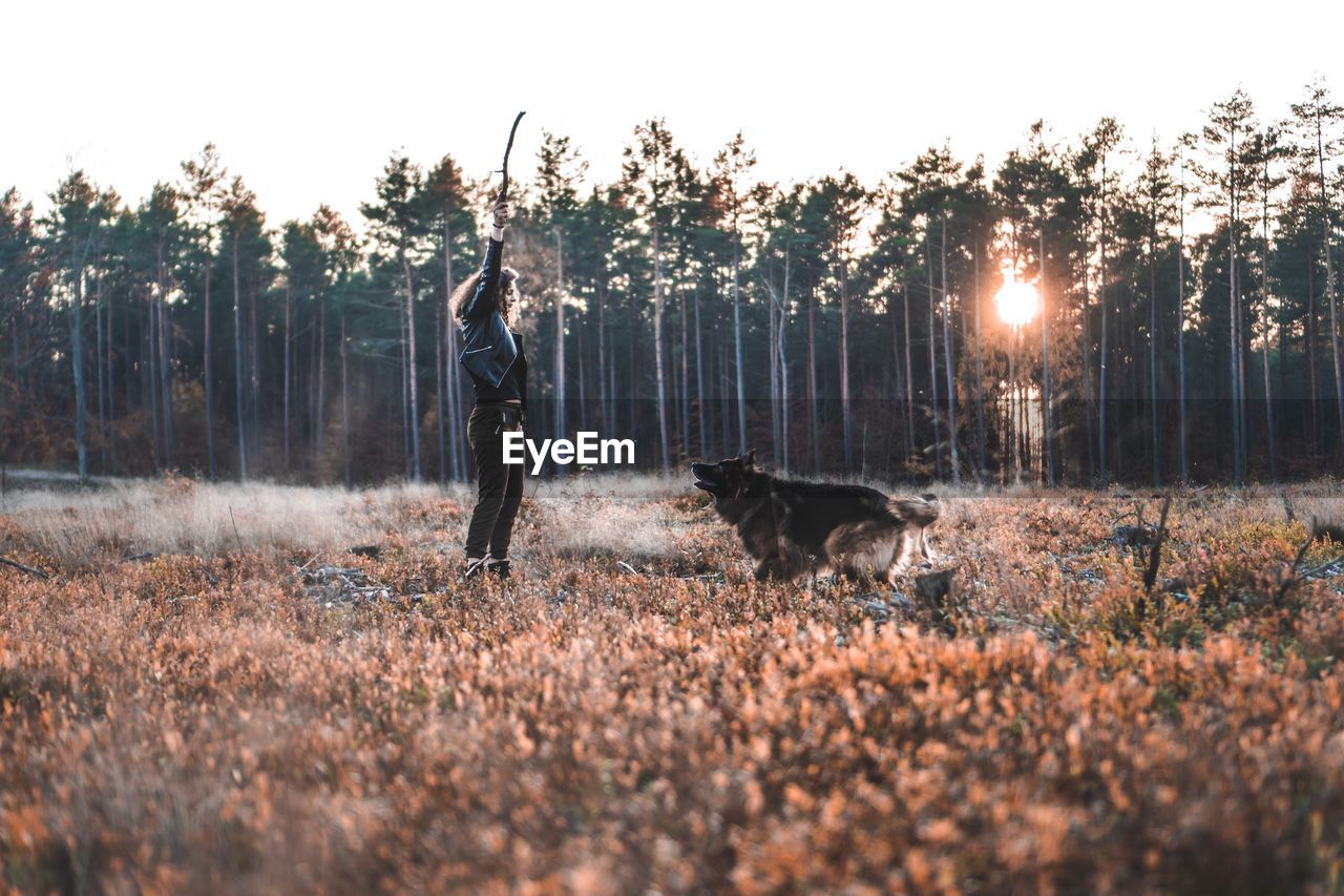 mammal, dog, pets, canine, domestic, one animal, domestic animals, animal themes, tree, animal, plant, land, vertebrate, real people, one person, nature, full length, adult, lifestyles, field, pet owner, outdoors, woodland, human arm