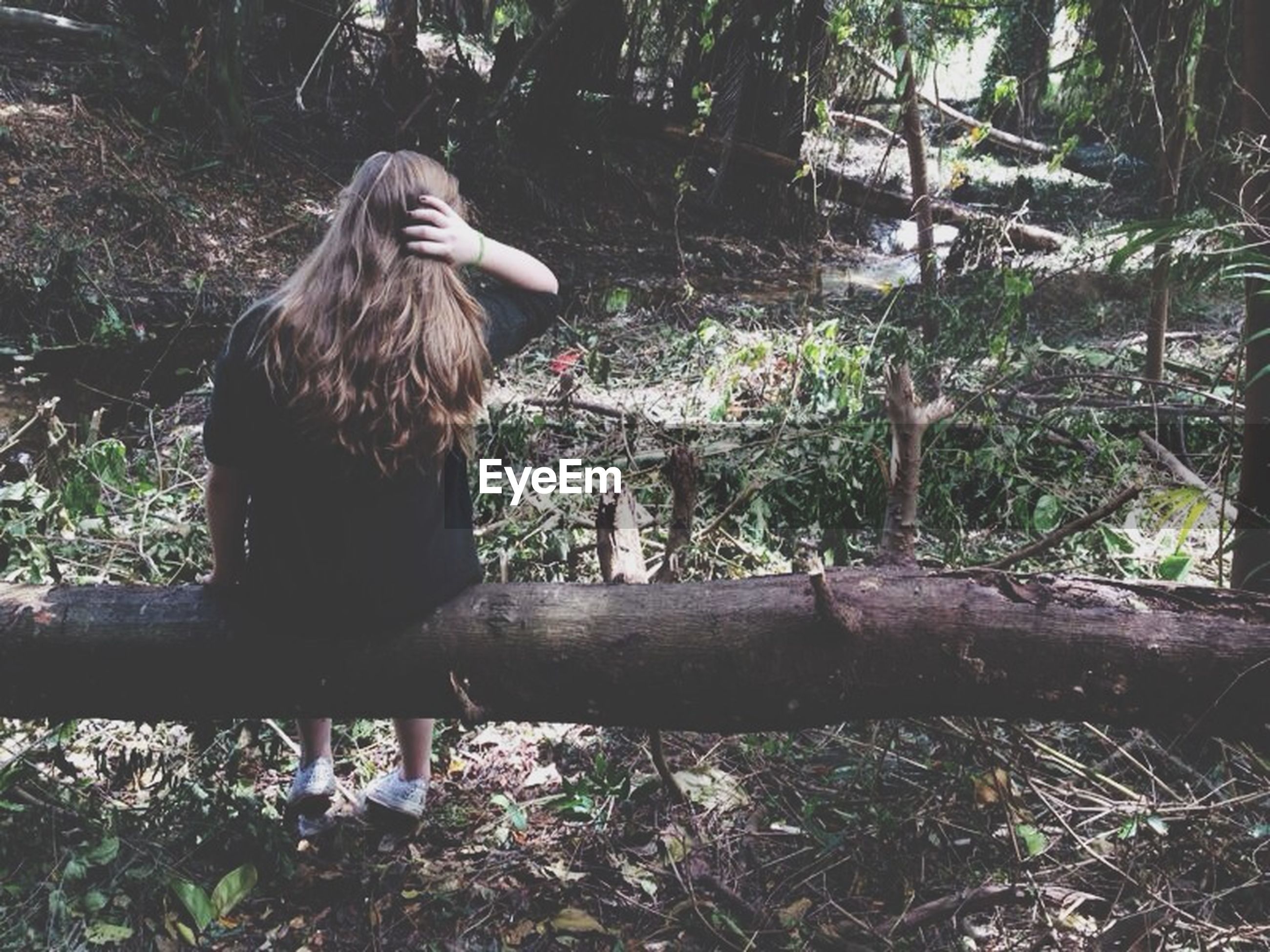tree, forest, young adult, person, lifestyles, casual clothing, growth, leisure activity, plant, young women, standing, three quarter length, full length, nature, tree trunk, front view, sitting, day