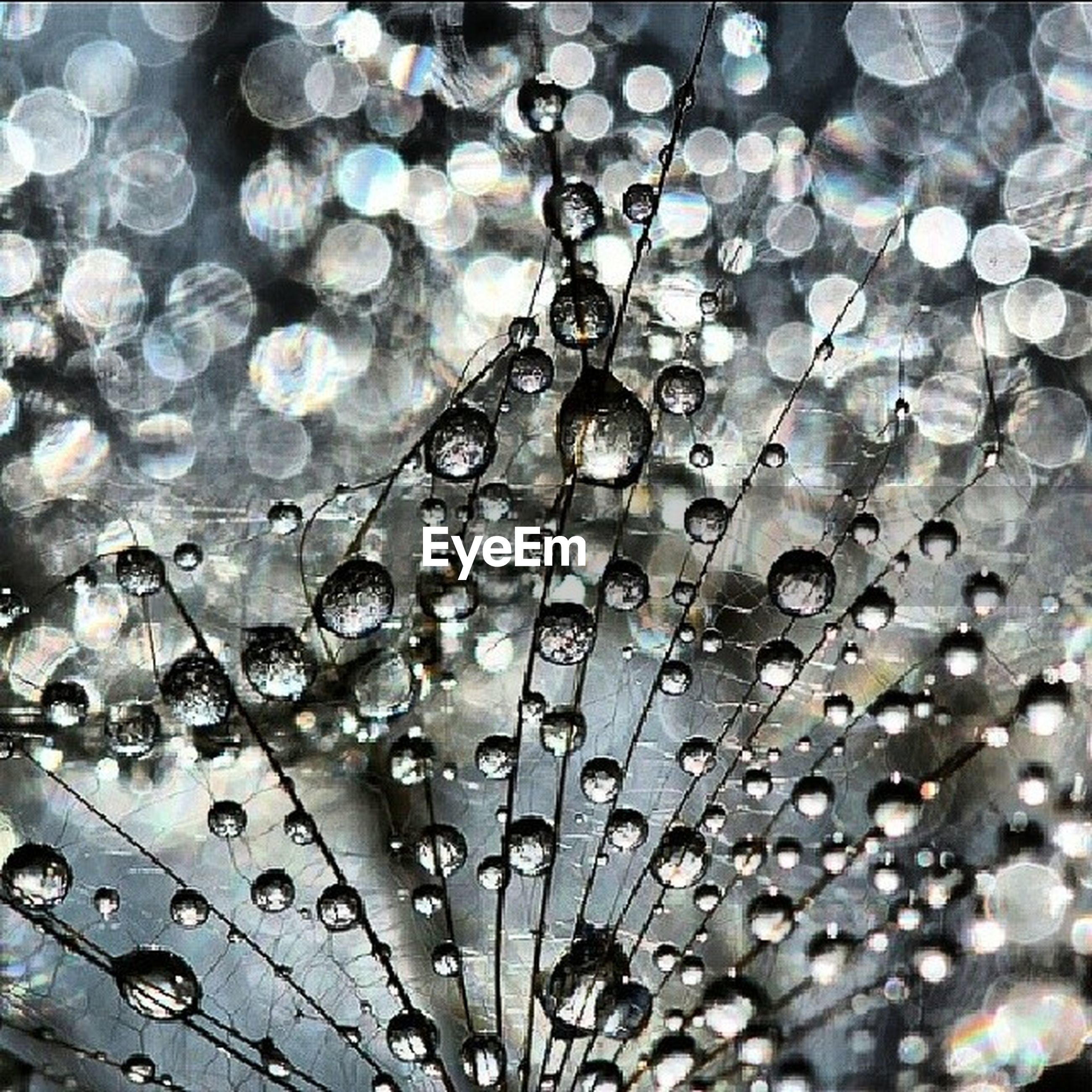 drop, wet, backgrounds, full frame, water, rain, raindrop, pattern, close-up, nature, fragility, no people, day, outdoors, weather, focus on foreground, low angle view, lighting equipment, beauty in nature