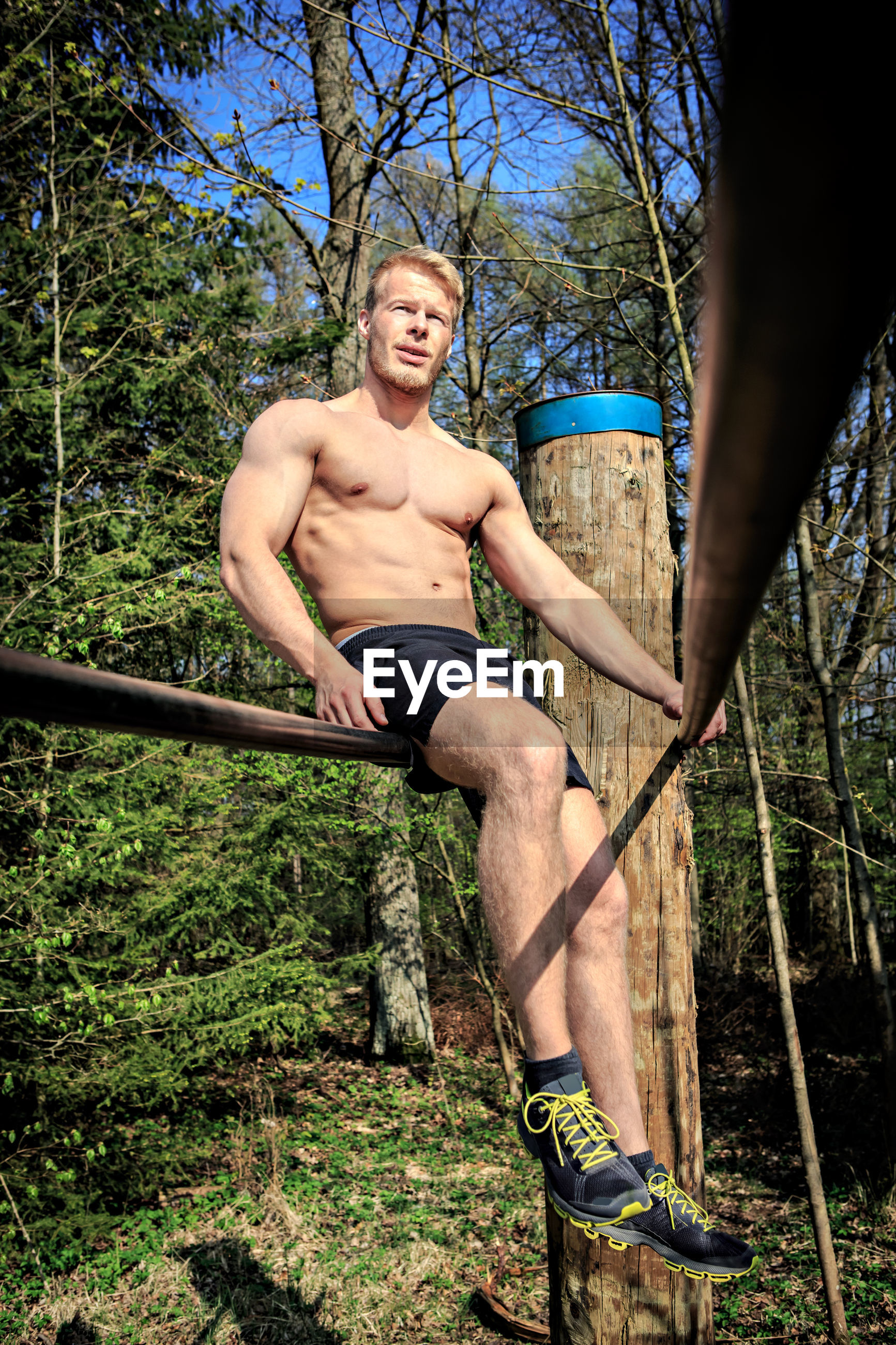 Low angle view of shirtless man sitting on railing in forest