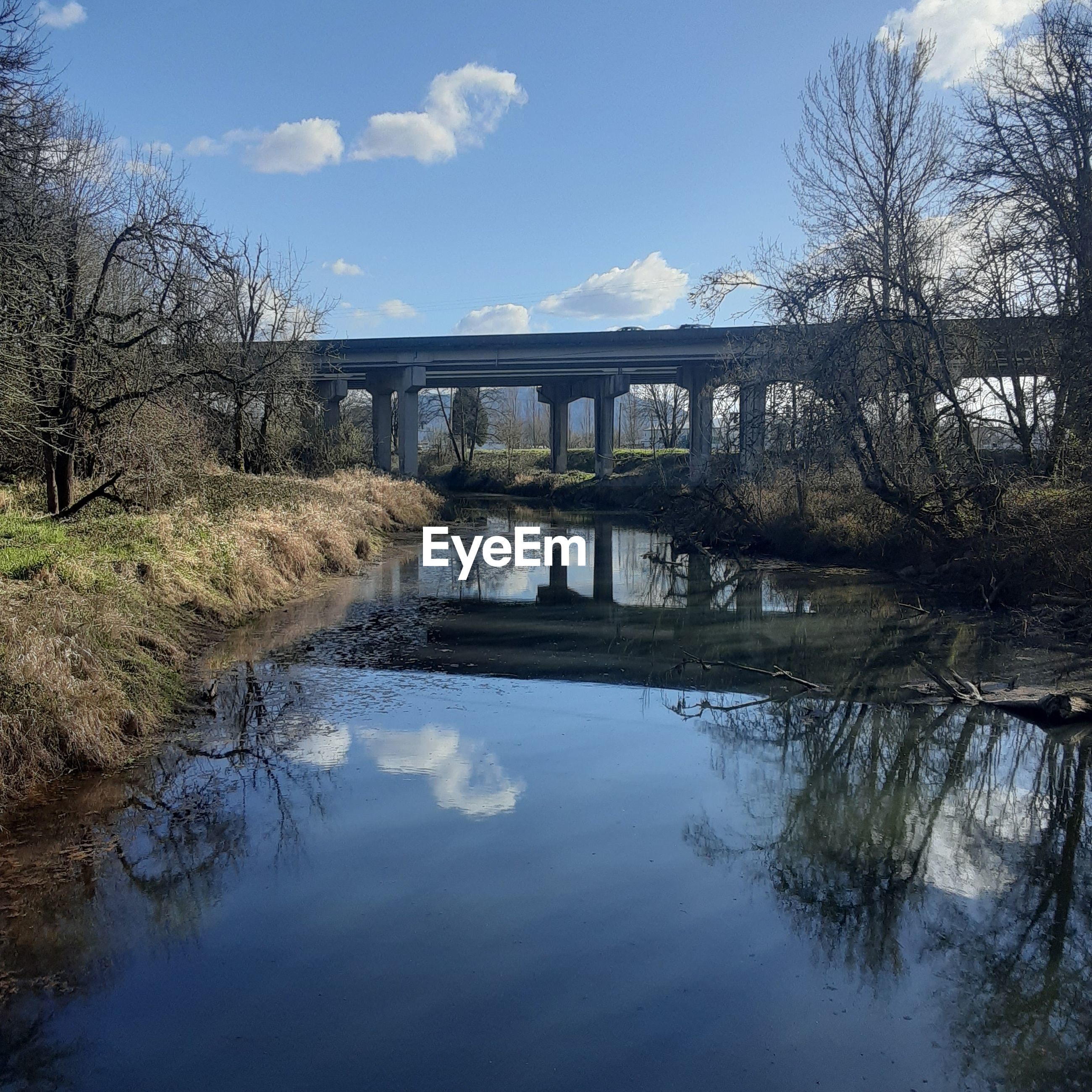 BRIDGE OVER RIVER AMIDST TREES AGAINST SKY