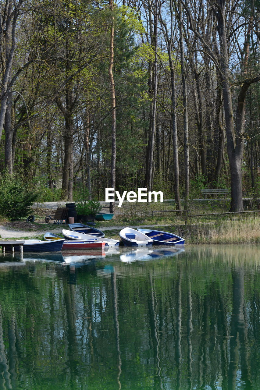 water, tree, nautical vessel, reflection, mode of transportation, plant, transportation, nature, day, tranquility, forest, beauty in nature, land, lake, no people, scenics - nature, tranquil scene, outdoors, moored, woodland, rowboat, recreational boat