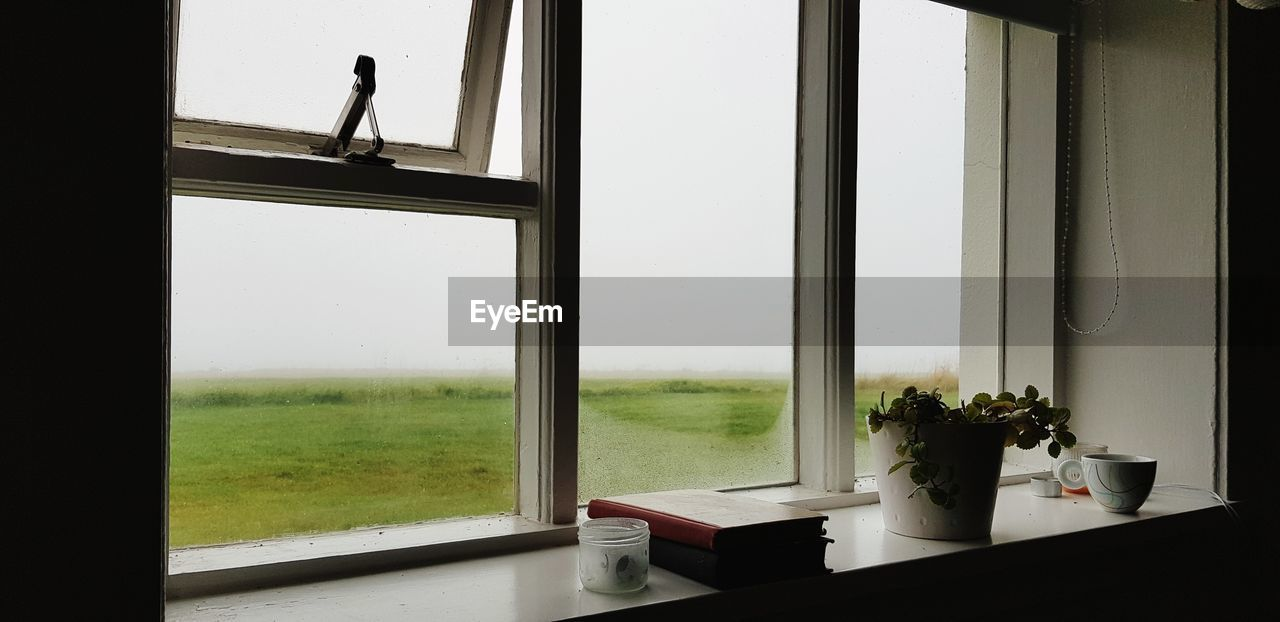 window, plant, glass - material, transparent, nature, indoors, day, table, no people, growth, potted plant, grass, architecture, window sill, clear sky, reflection, sky, window frame