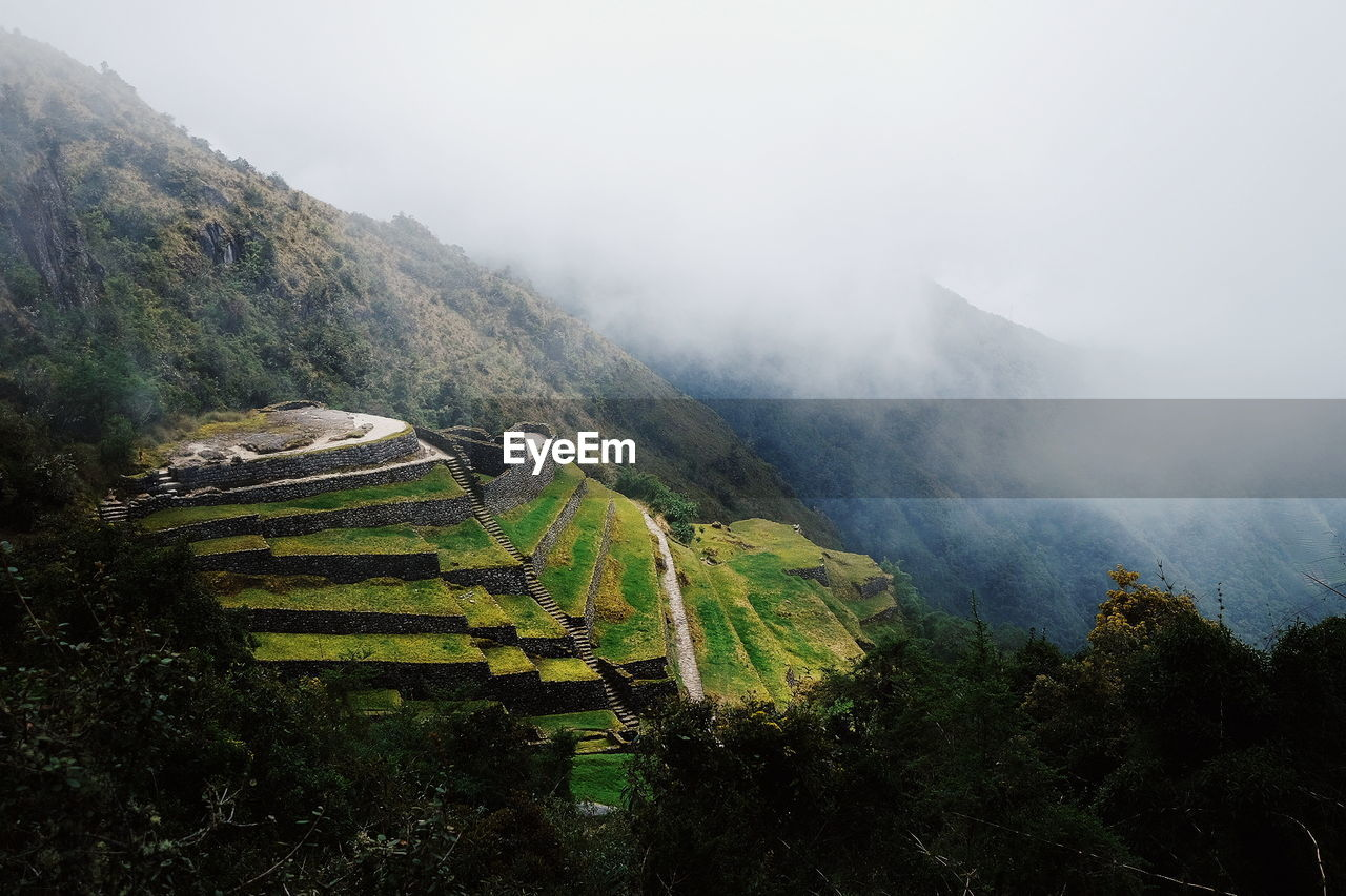 mountain, landscape, fog, nature, scenics, beauty in nature, tranquil scene, tranquility, foggy, agriculture, field, high angle view, no people, outdoors, terraced field, day, mountain range, mist, physical geography, rural scene, sky, rice paddy, tree