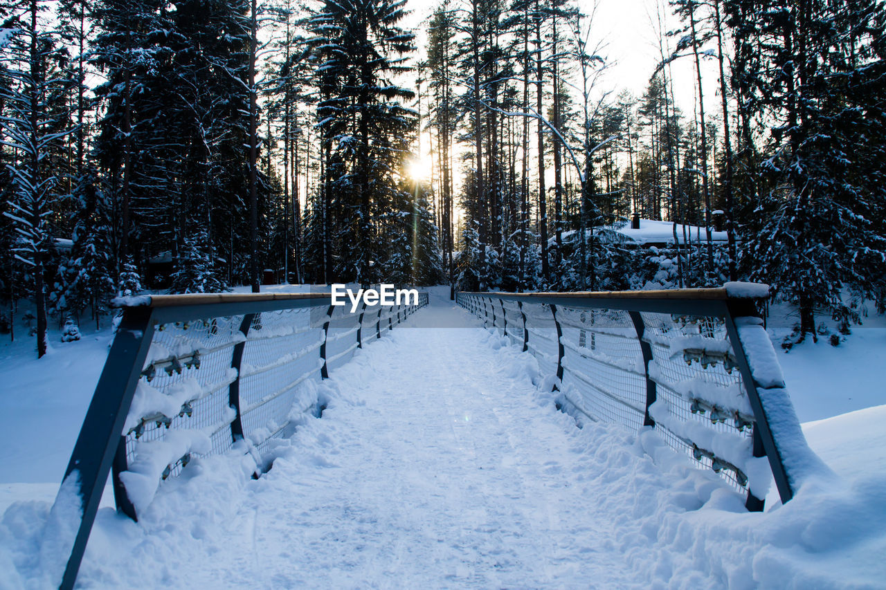 snow, winter, cold temperature, tree, white color, nature, tranquil scene, tranquility, weather, scenics, beauty in nature, outdoors, no people, field, landscape, day, sky