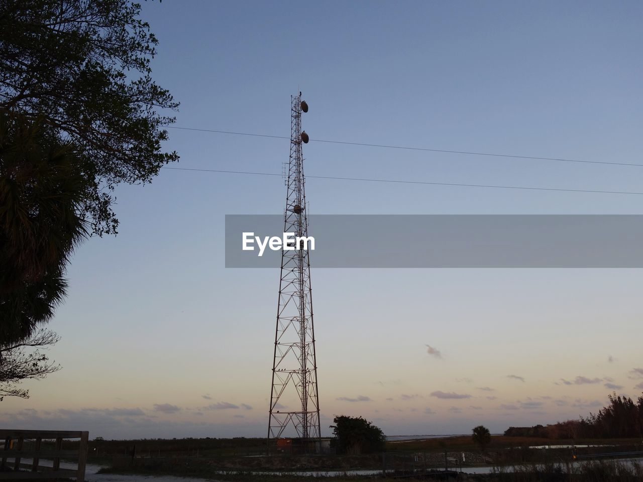 cable, electricity pylon, connection, electricity, power line, power supply, sunset, tree, no people, sky, low angle view, technology, fuel and power generation, built structure, outdoors, clear sky, architecture, day, nature, telephone line, bird