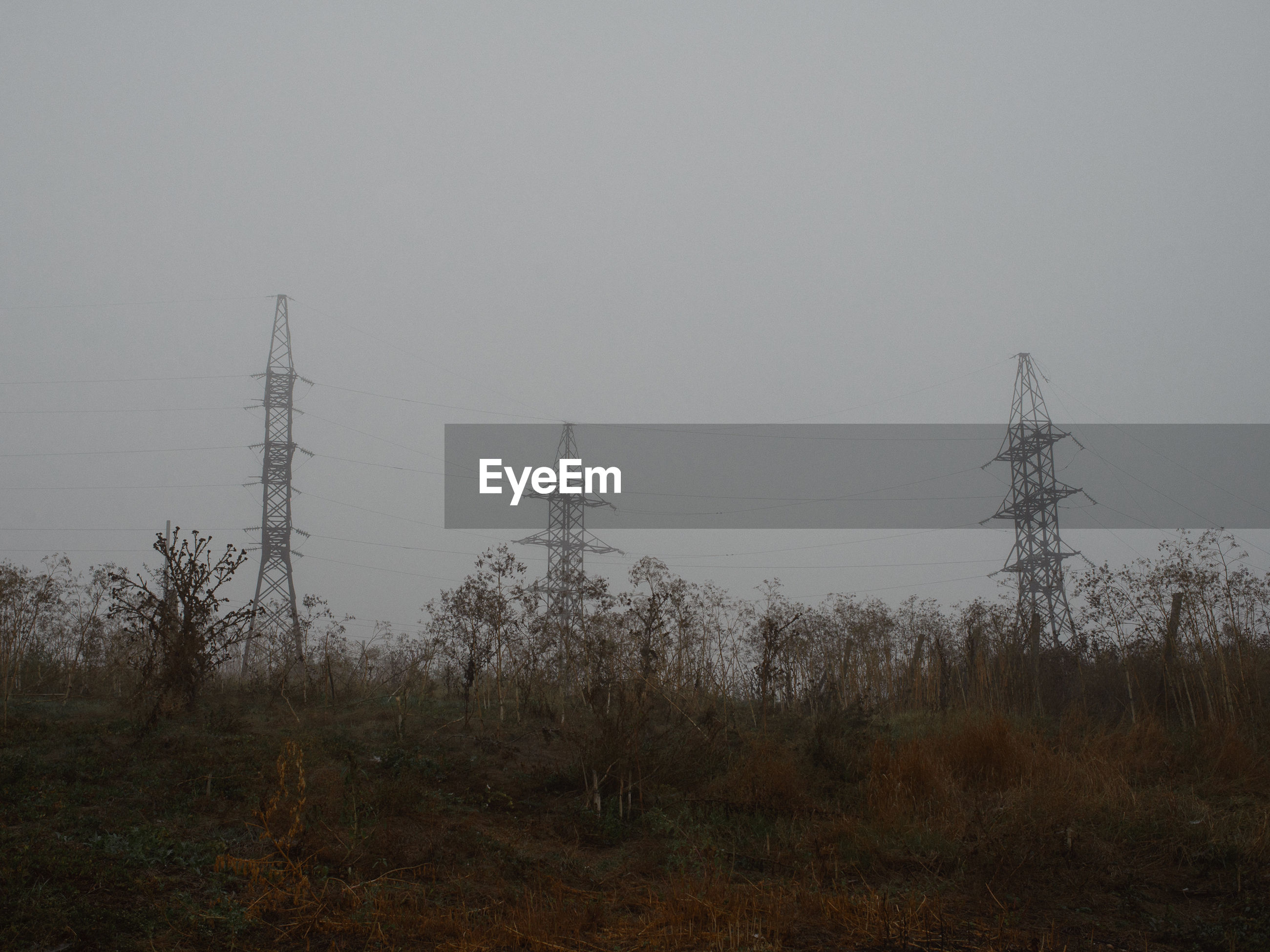 ELECTRICITY PYLONS IN FOGGY WEATHER