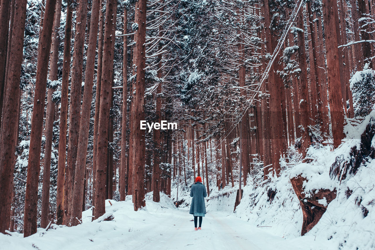 Rear View Of Woman Walking On Snow Covered Field In Forest