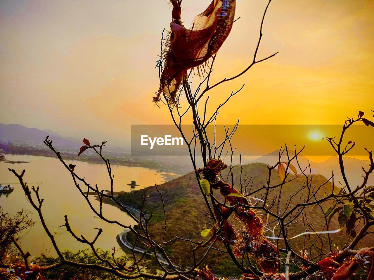 sunset, sky, orange color, beauty in nature, plant, scenics - nature, nature, tranquility, tranquil scene, sun, tree, no people, branch, non-urban scene, idyllic, water, outdoors, land, sea, dead plant