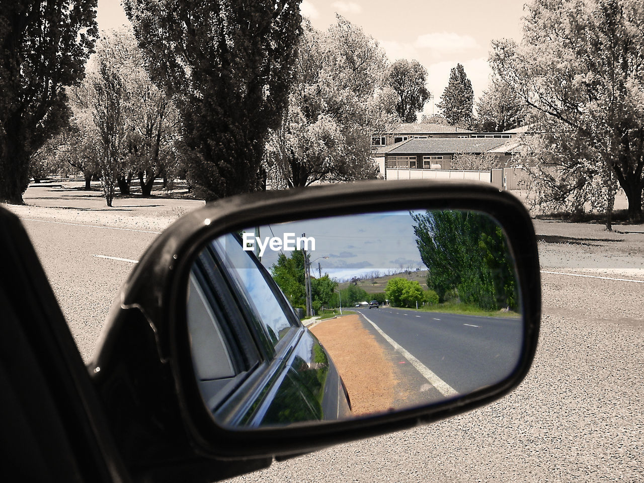 tree, car, transportation, side-view mirror, road, land vehicle, mode of transport, day, reflection, nature, no people, road trip, sky, outdoors
