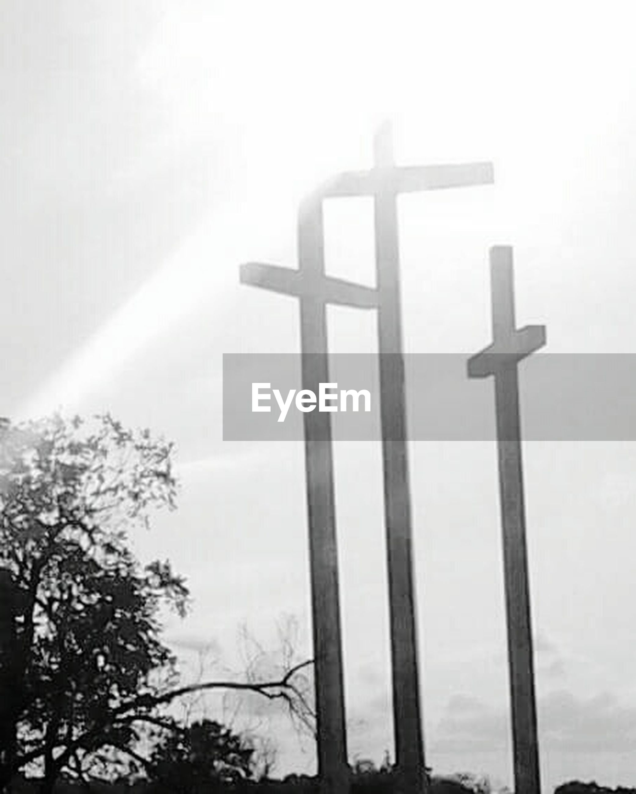 cross, religion, spirituality, crucifix, sky, low angle view, day, no people, tree, outdoors, nature