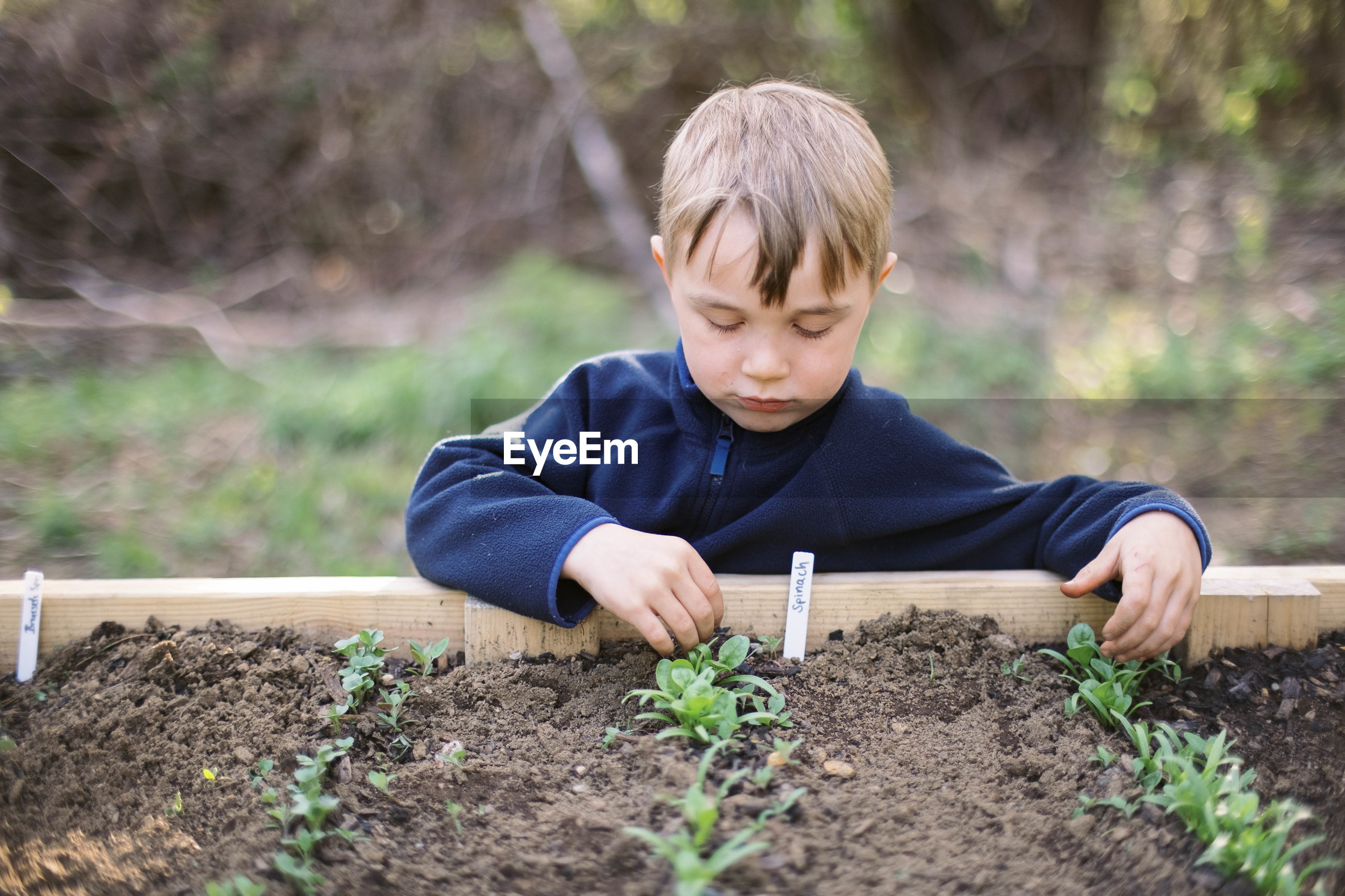 BOY LOOKING AWAY WHILE STANDING ON DIRT LAND