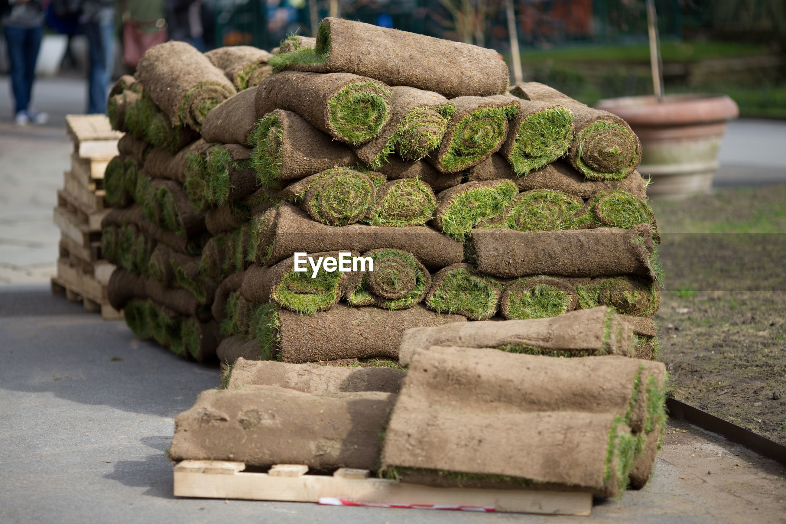 Stacked rolled turfs on footpath