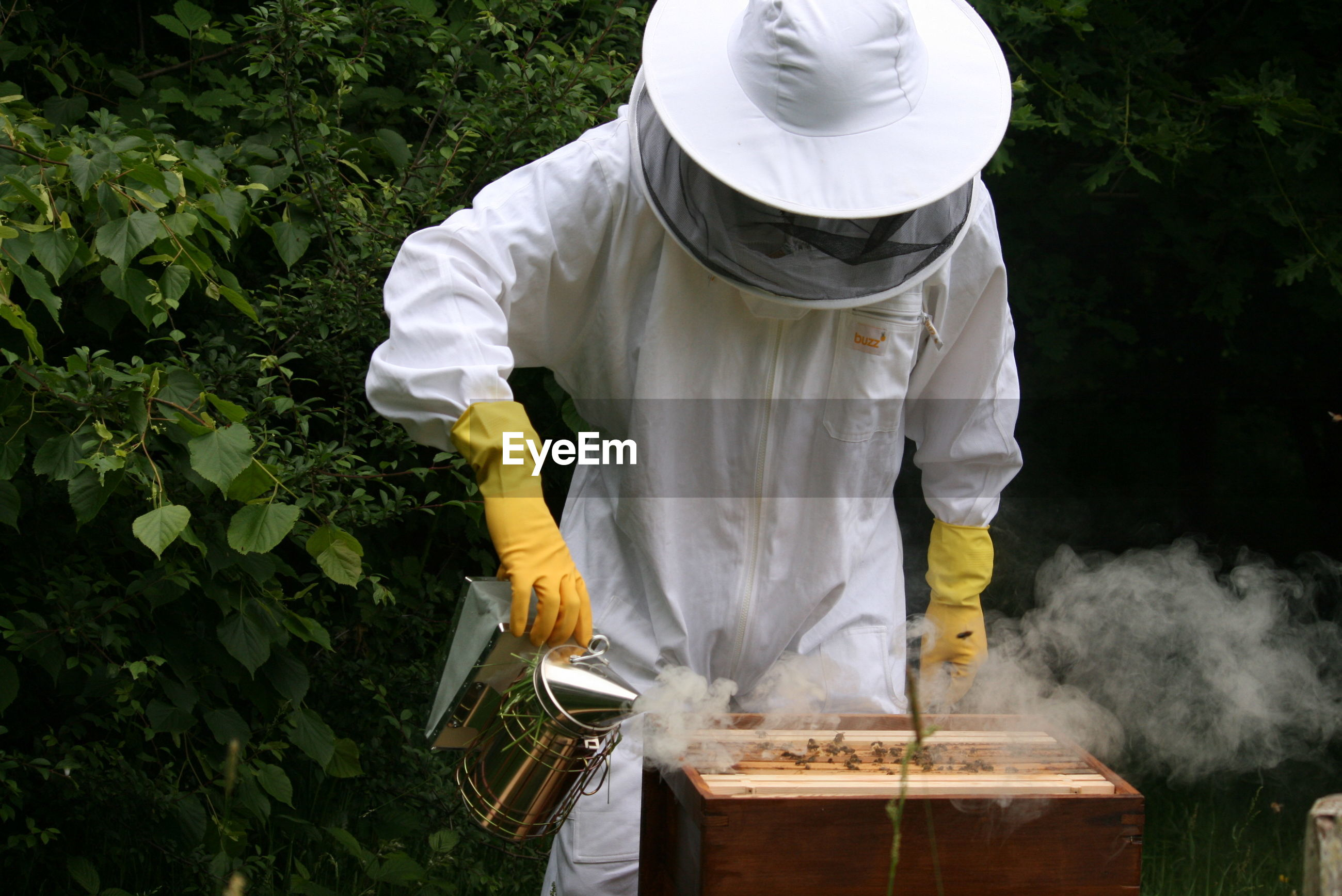 Beekeeper in protective suit examining bees on honeycomb