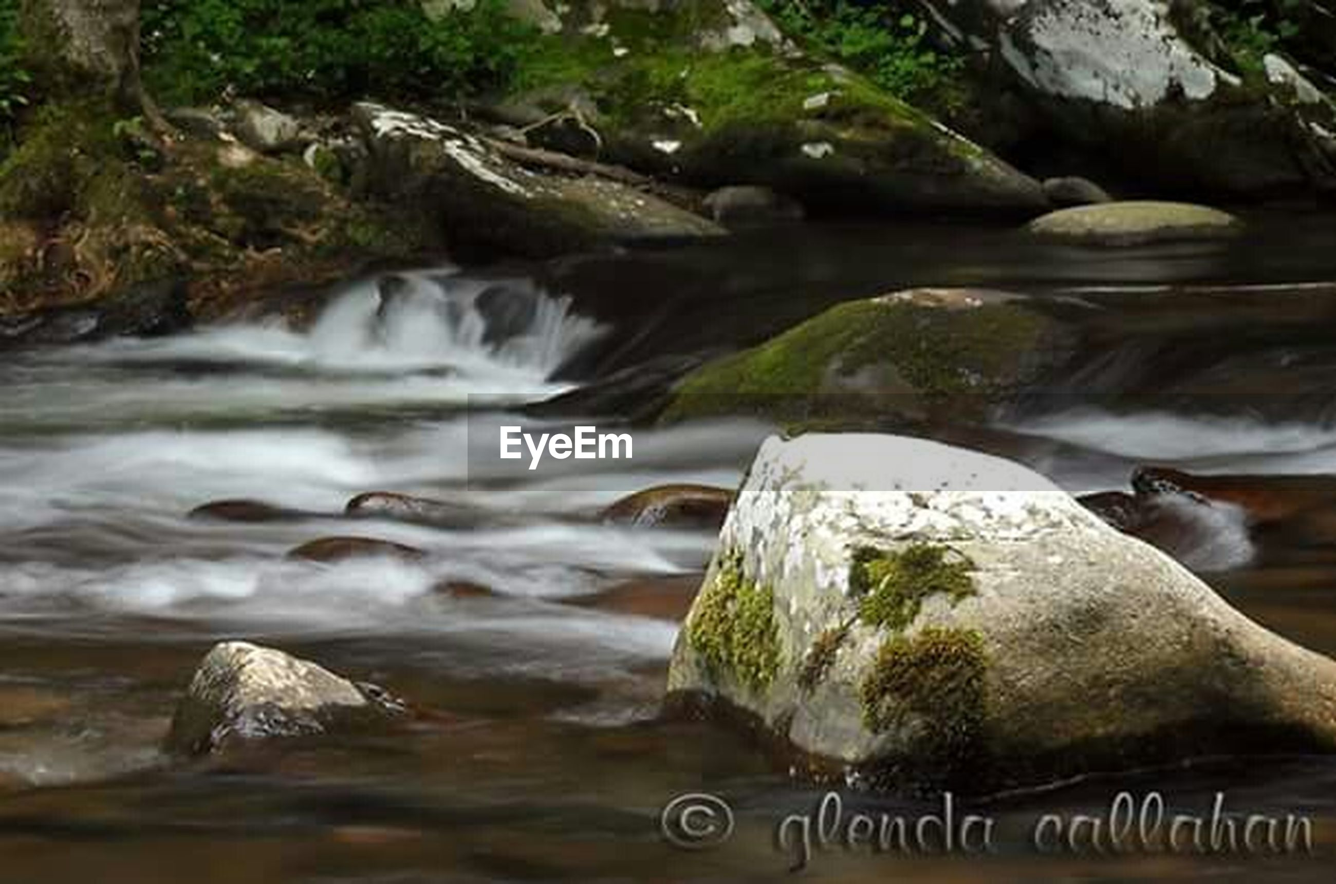 water, flowing water, flowing, waterfall, rock - object, motion, nature, beauty in nature, stream, long exposure, river, scenics, forest, rock, tranquility, close-up, day, moss, outdoors, stone