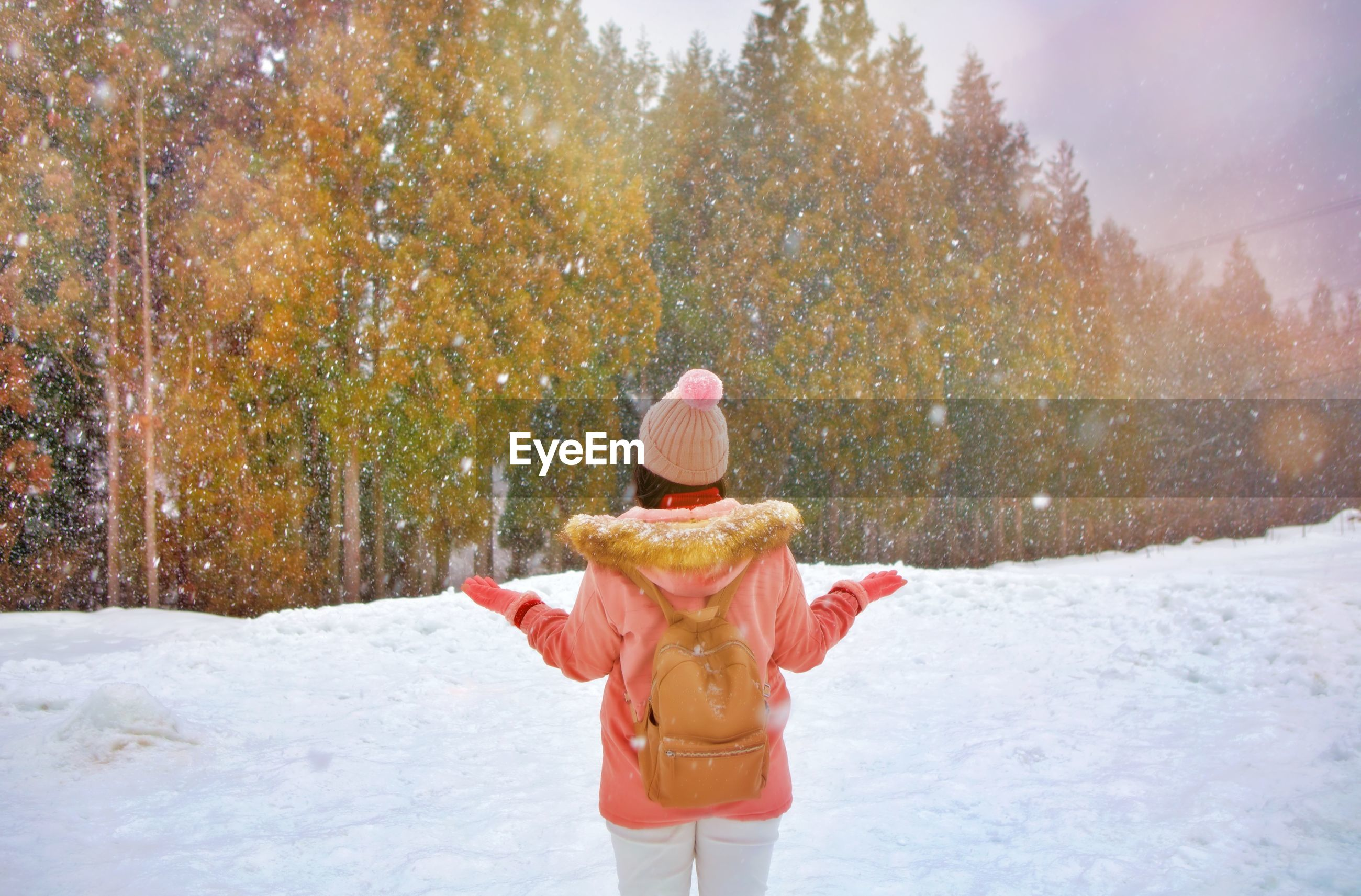 Rear view of woman standing on snow covered land against trees