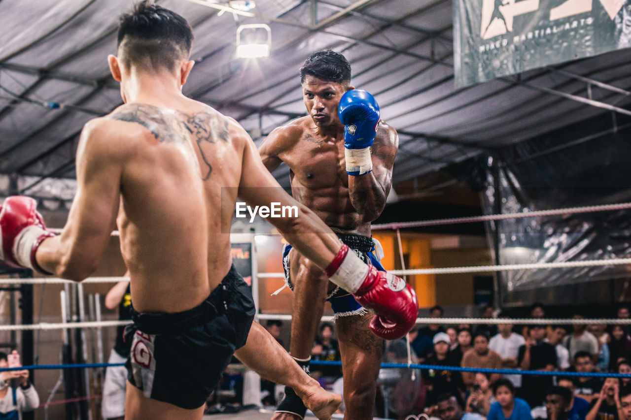 sport, athlete, competition, shirtless, muscular build, determination, strength, group of people, boxing ring, young men, adult, competitive sport, sportsman, men, young adult, vitality, boxing - sport, motion, boxing glove, healthy lifestyle, boxer, punching