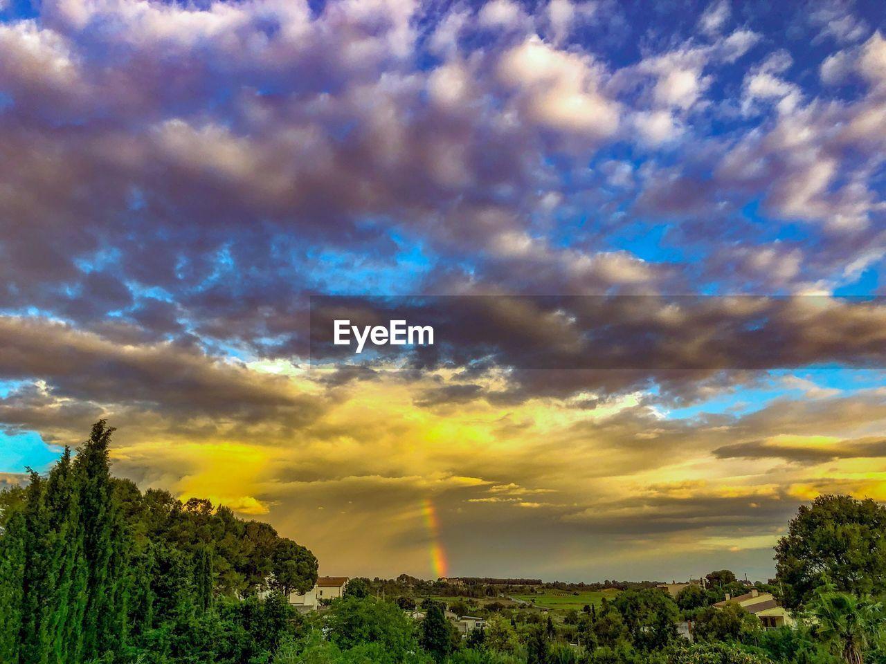 cloud - sky, sky, beauty in nature, plant, scenics - nature, tree, nature, tranquility, tranquil scene, no people, non-urban scene, sunset, outdoors, environment, idyllic, land, rock, rock - object, landscape