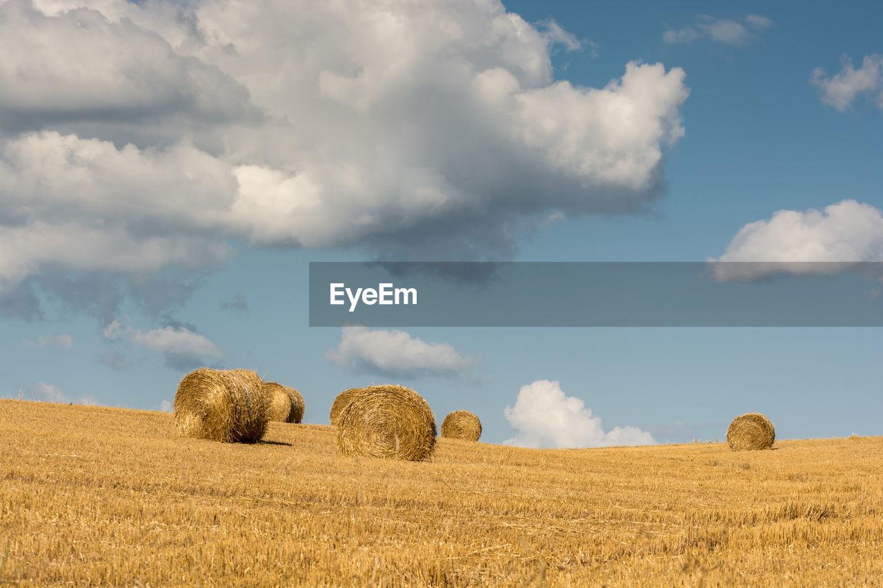 Hay Bales In Fields Against Clouds