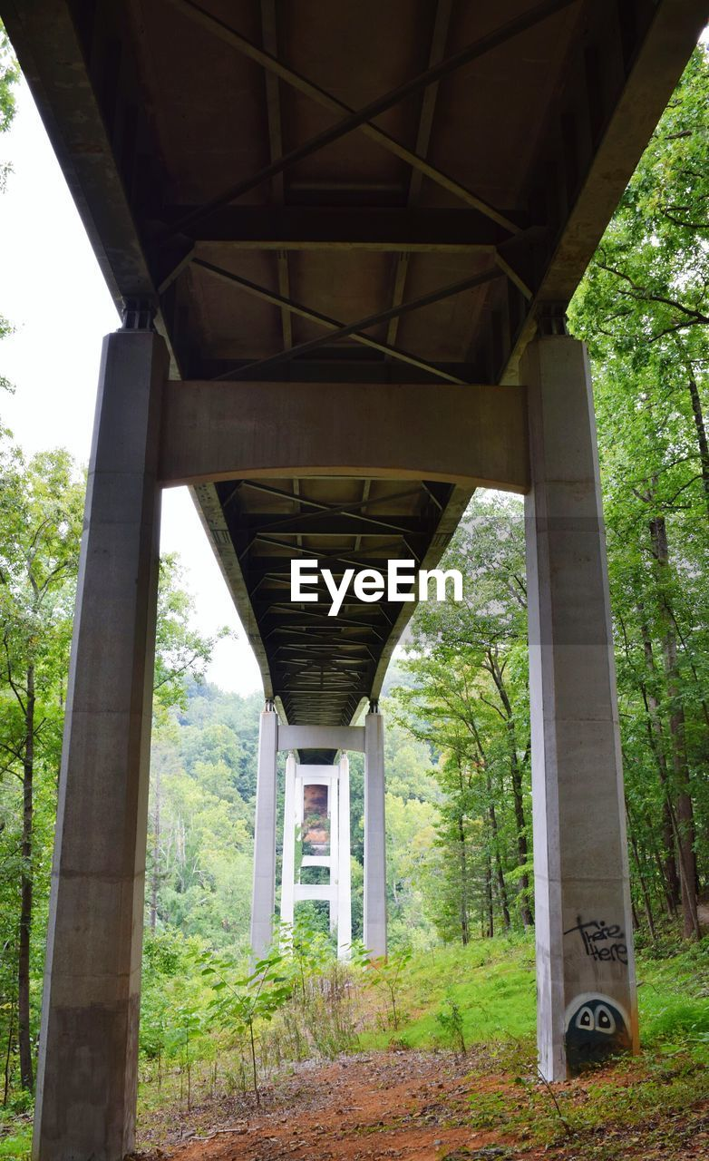 architecture, bridge - man made structure, connection, built structure, below, tree, underneath, day, transportation, no people, low angle view, nature, outdoors, architectural column, growth, under