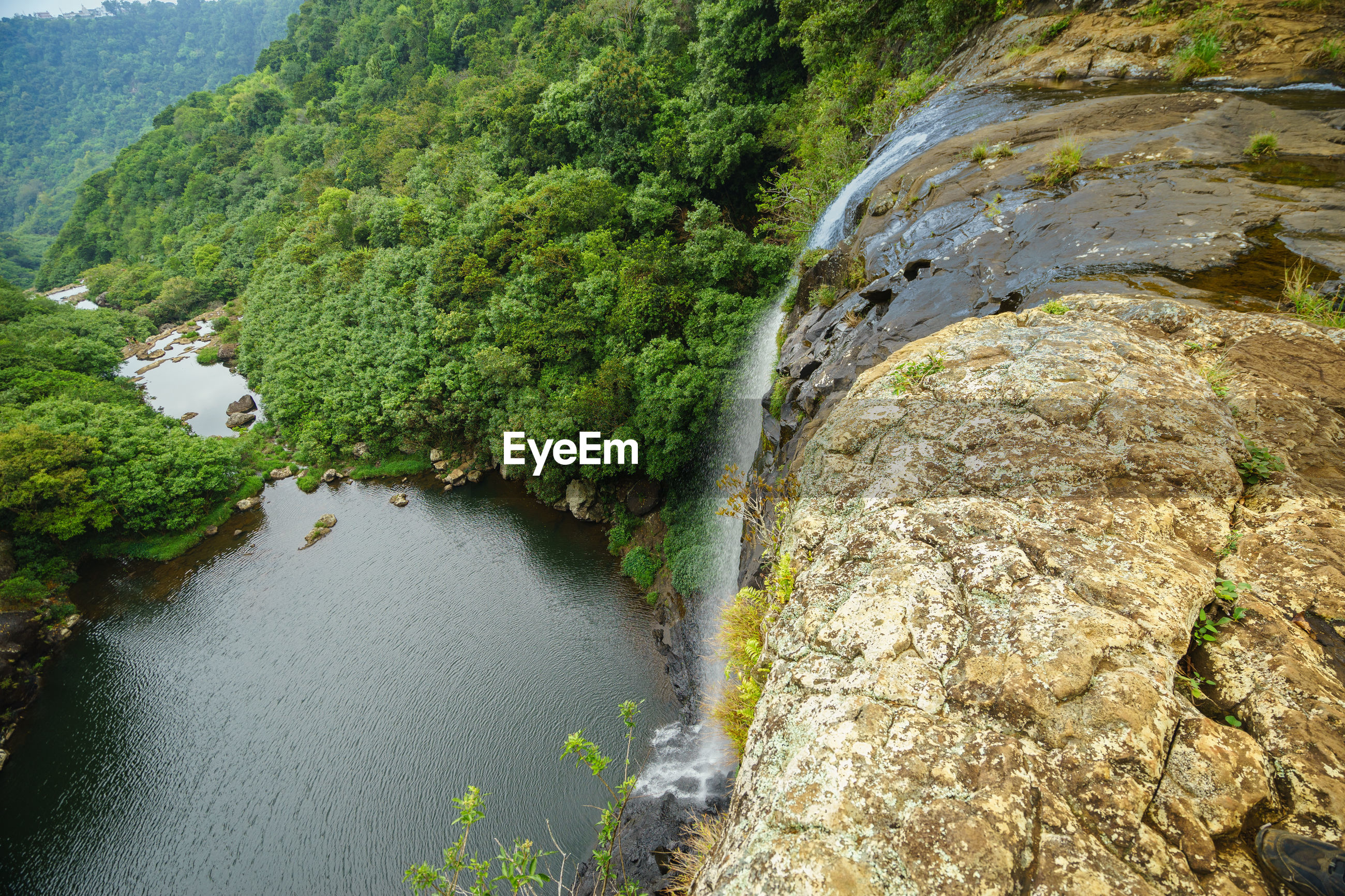 HIGH ANGLE VIEW OF RIVER FLOWING AMIDST TREES