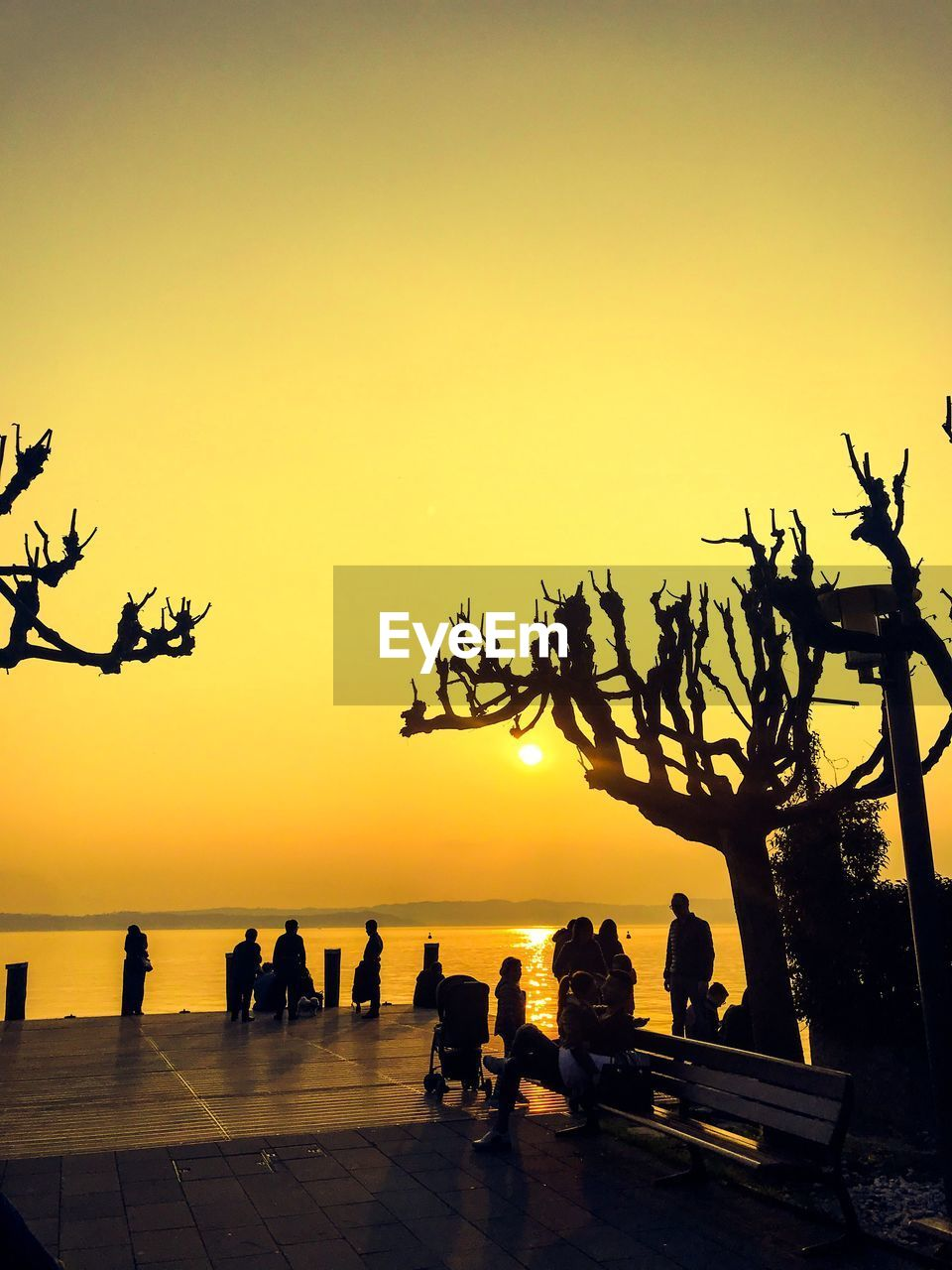 sky, sunset, group of people, silhouette, water, sea, orange color, real people, nature, scenics - nature, beauty in nature, leisure activity, tree, beach, large group of people, horizon over water, lifestyles, land, tranquility, outdoors