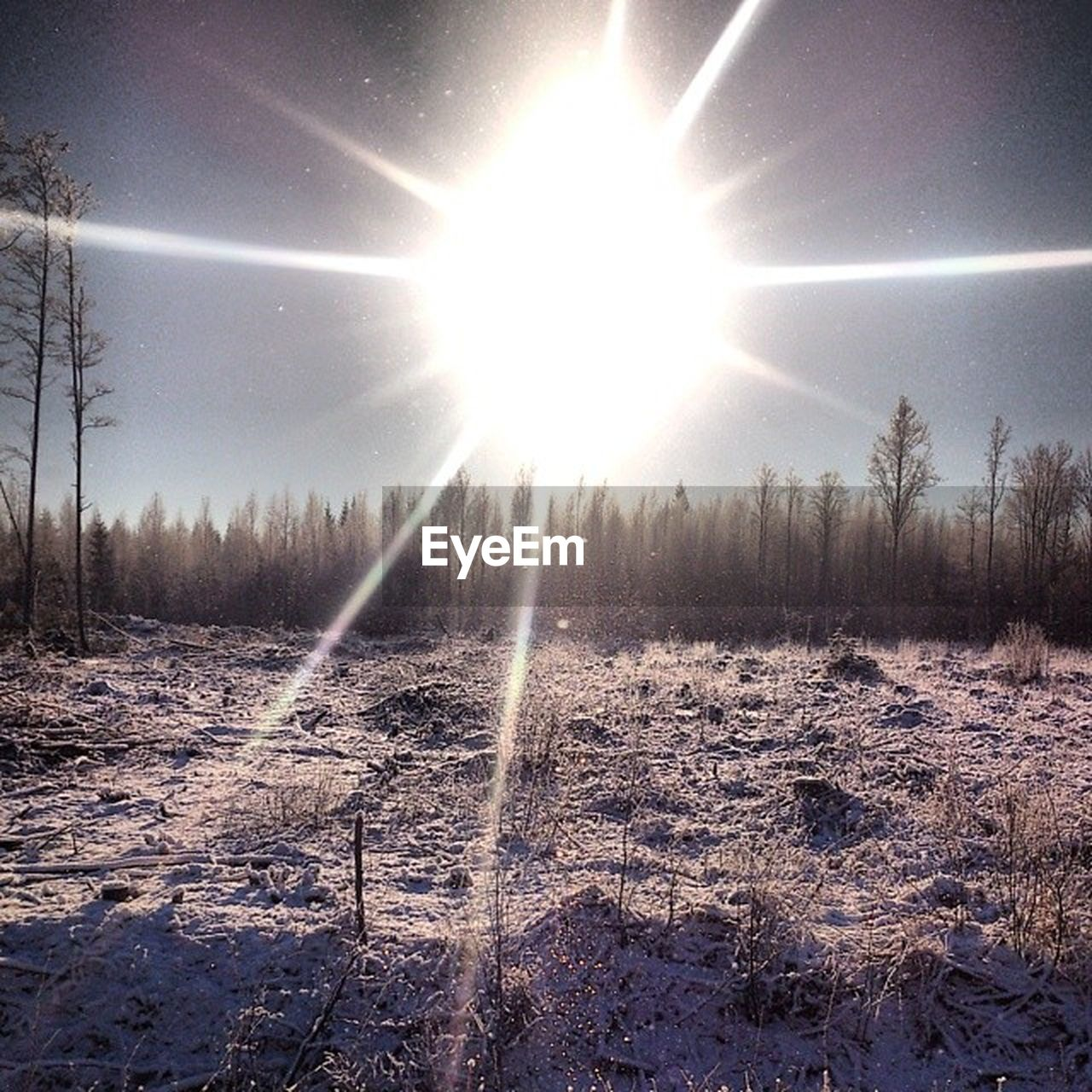 winter, cold temperature, snow, sun, nature, sunbeam, beauty in nature, weather, sunlight, outdoors, no people, sky, spraying, scenics, tree, motion, day, landscape