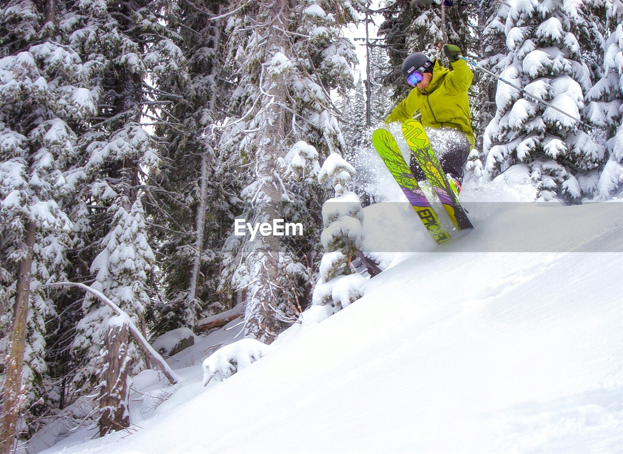 MAN SKIING ON SNOW COVERED TREES