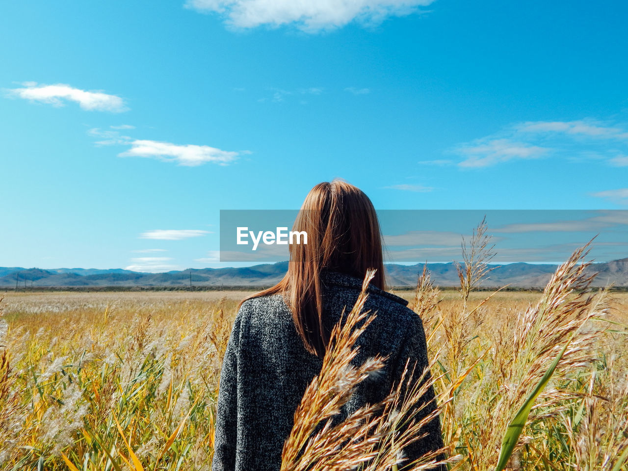 field, sky, rear view, plant, one person, land, hairstyle, beauty in nature, landscape, cloud - sky, real people, standing, nature, lifestyles, women, long hair, leisure activity, environment, scenics - nature, day, hair, outdoors