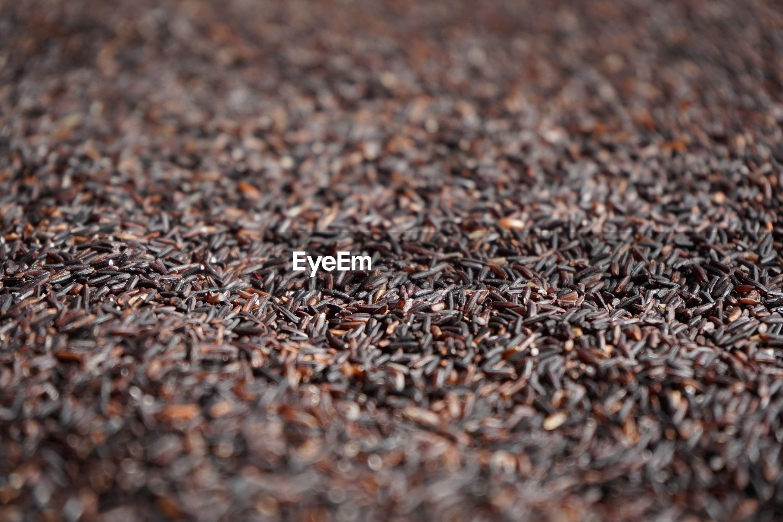 Full frame shot of brown rice
