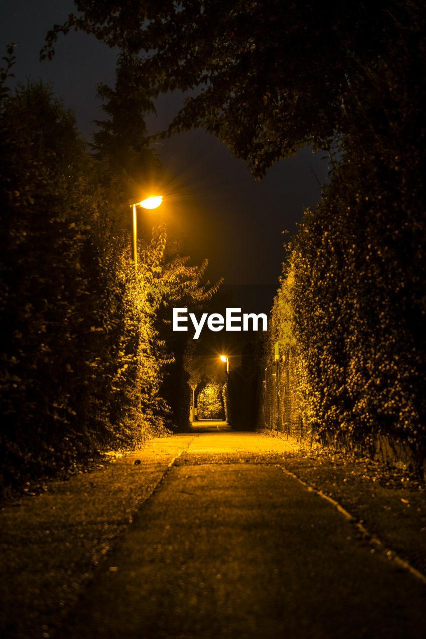 illuminated, night, tree, the way forward, no people, outdoors, nature, sky