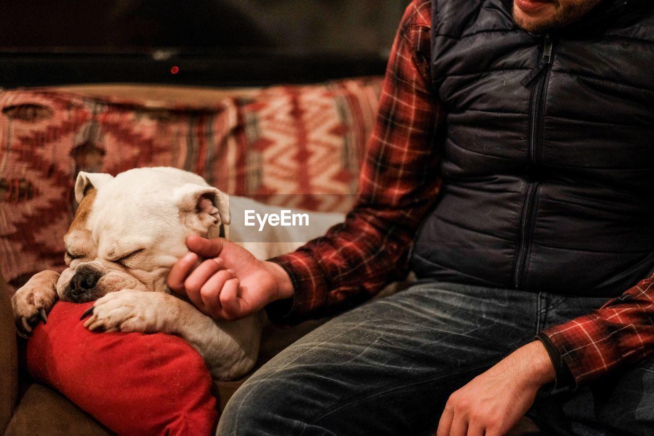 Close-up of man stroking dog at home