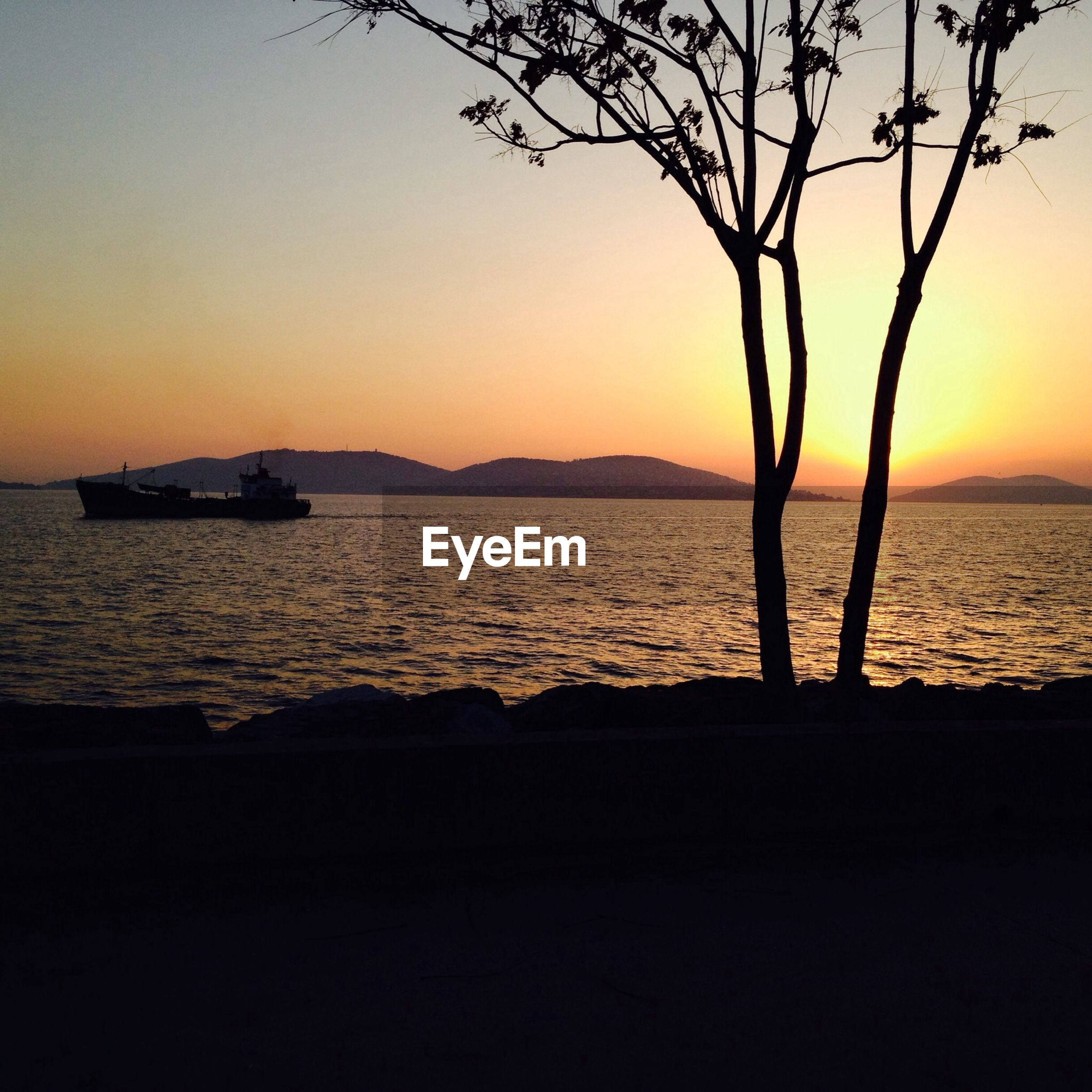 sunset, orange color, silhouette, water, sea, scenics, tranquility, tranquil scene, beauty in nature, clear sky, sun, nature, idyllic, horizon over water, sky, branch, tree, copy space, bare tree, outdoors