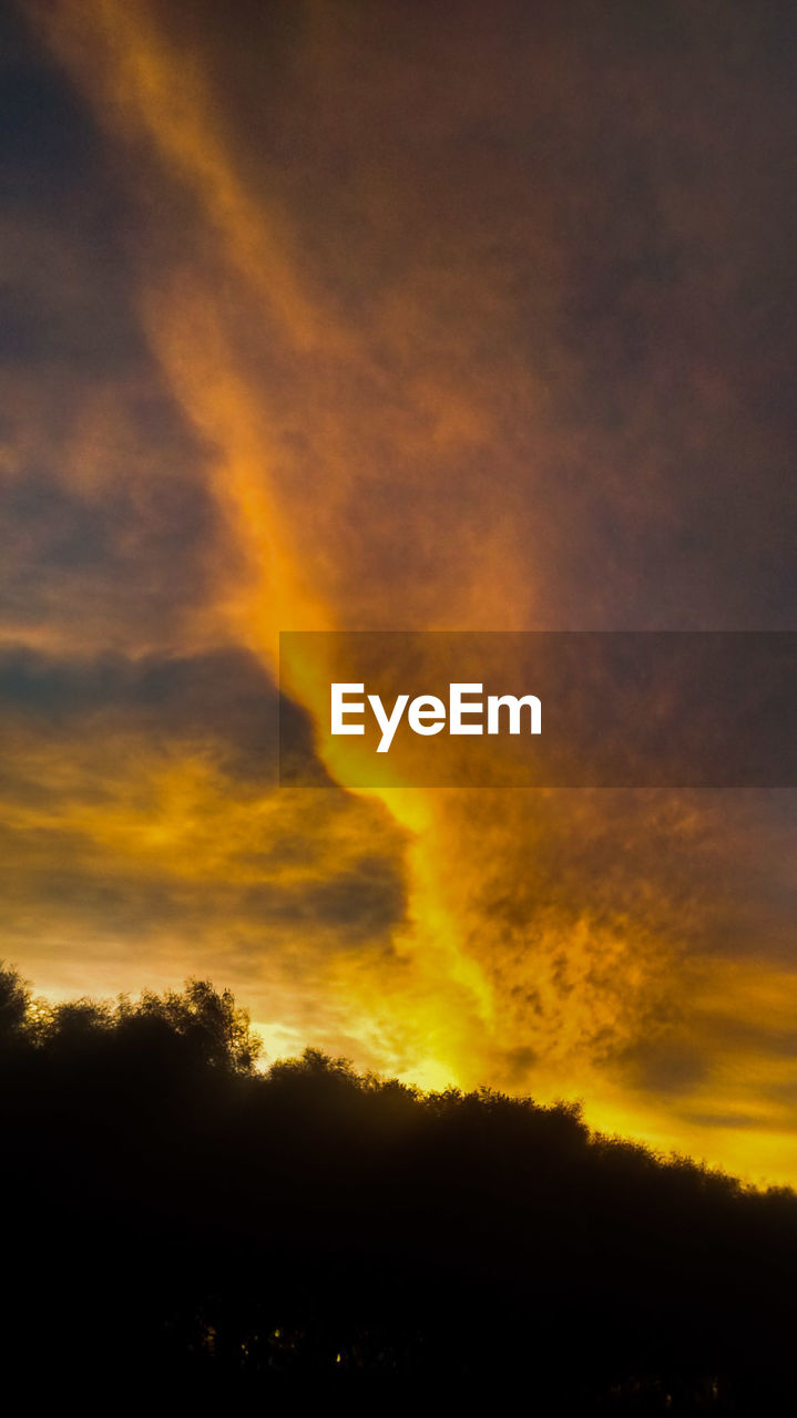 Low Angle View Of Silhouette Trees Against Cloudy Orange Sky During Sunset