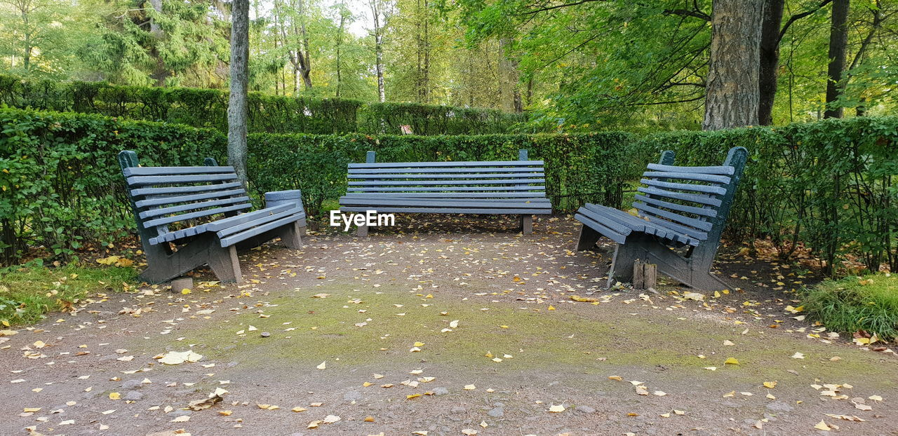 seat, bench, plant, tree, empty, absence, park bench, park, nature, no people, park - man made space, day, wood - material, chair, tranquility, growth, relaxation, land, green color, tree trunk, outdoors, wood, change
