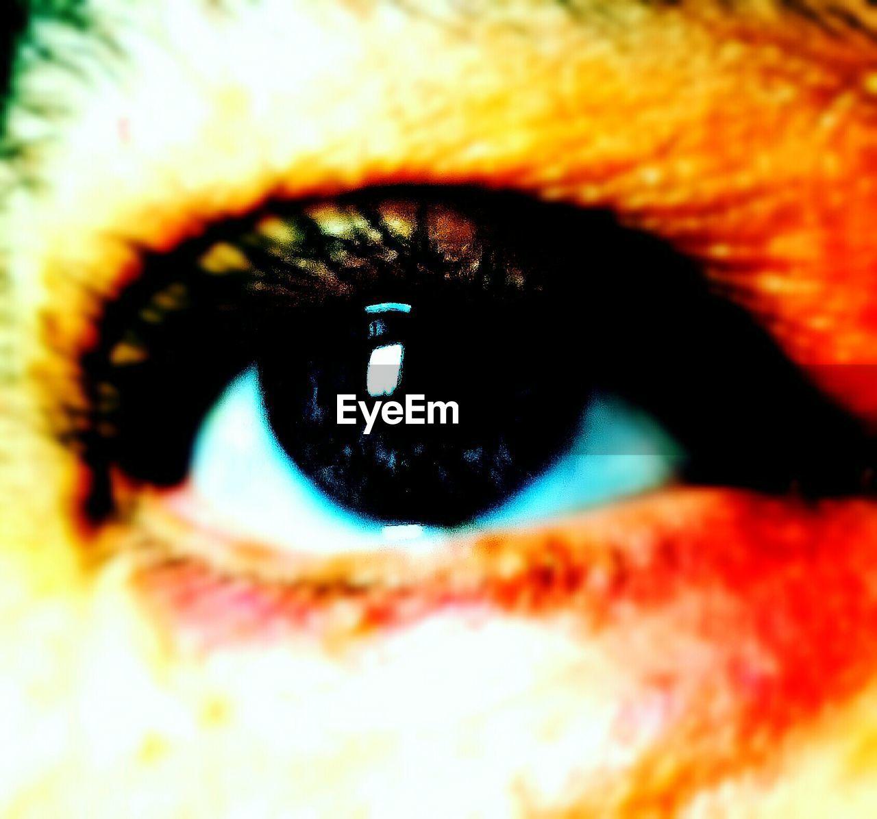 human eye, eyelash, real people, human body part, one person, eyesight, eyeball, sensory perception, iris - eye, close-up, full frame, portrait, looking at camera, outdoors, day, adult, people