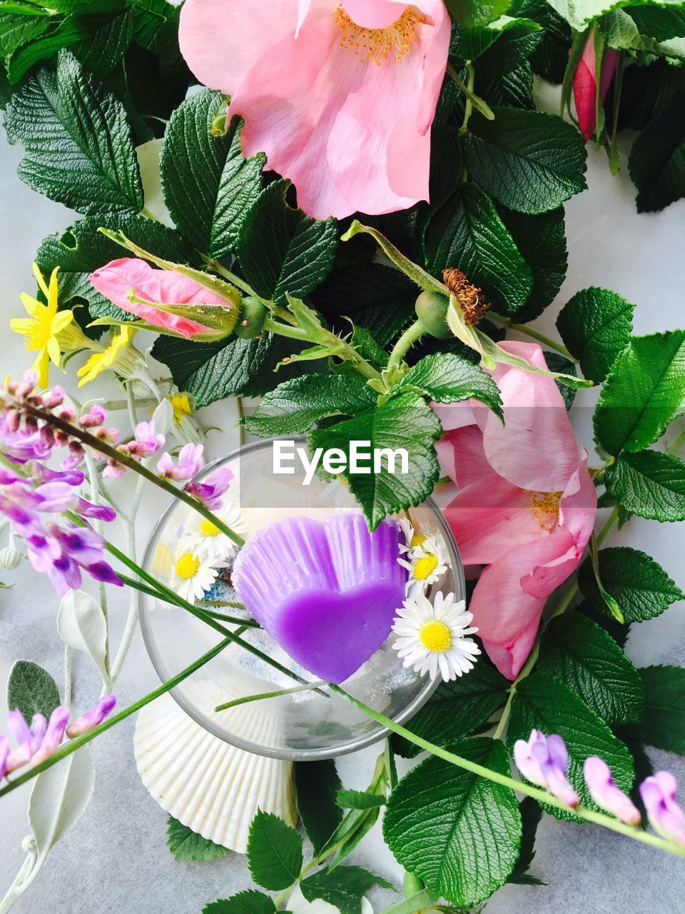 flower, petal, freshness, fragility, flower head, leaf, beauty in nature, pink color, no people, plant, high angle view, growth, nature, day, outdoors, blooming, close-up, periwinkle