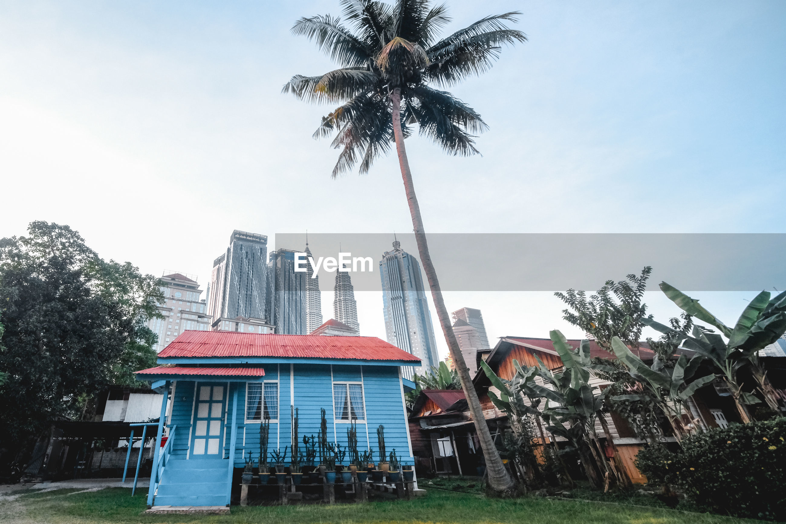 LOW ANGLE VIEW OF COCONUT PALM TREES AGAINST BUILDINGS